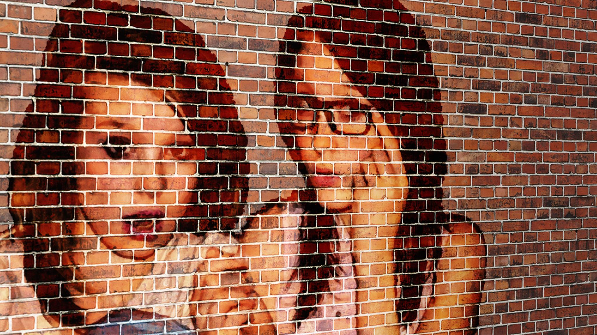 Another brick in the wall by William Hole