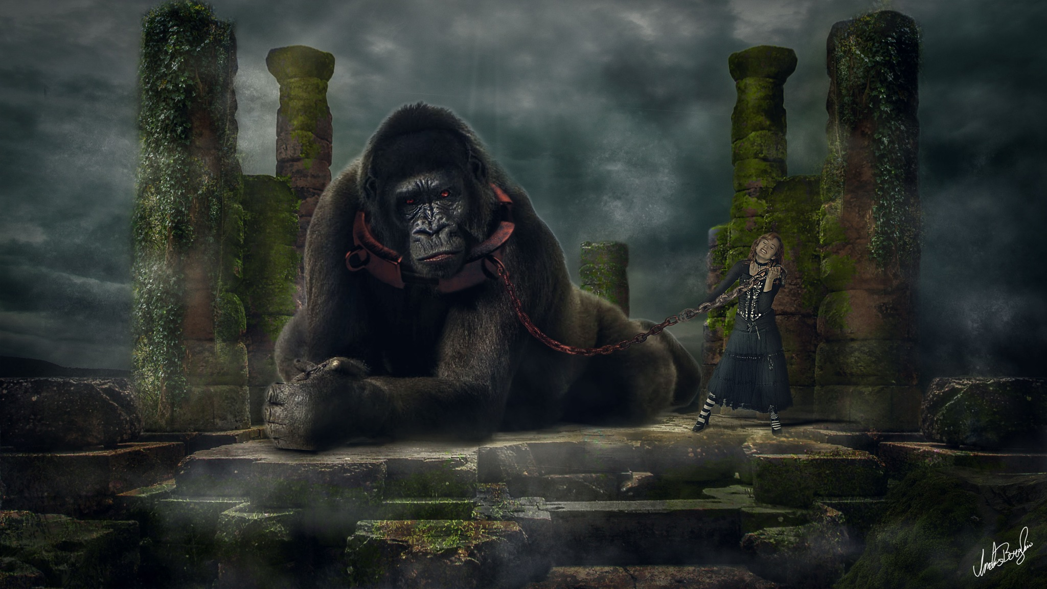 When Kong do not want, he does not want by Anders Borglin