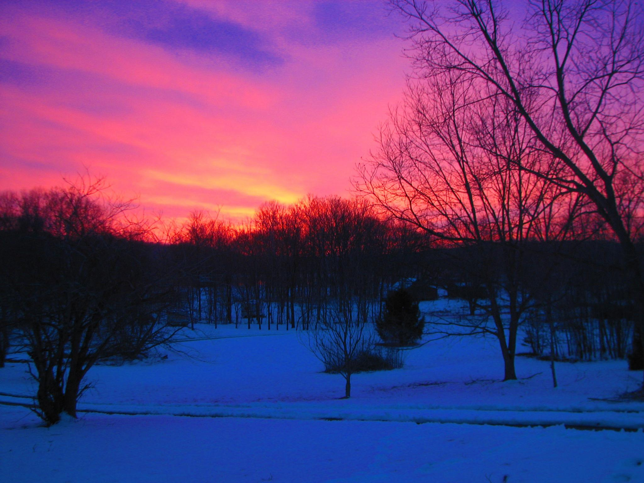 Purple snow by Charlie McLain