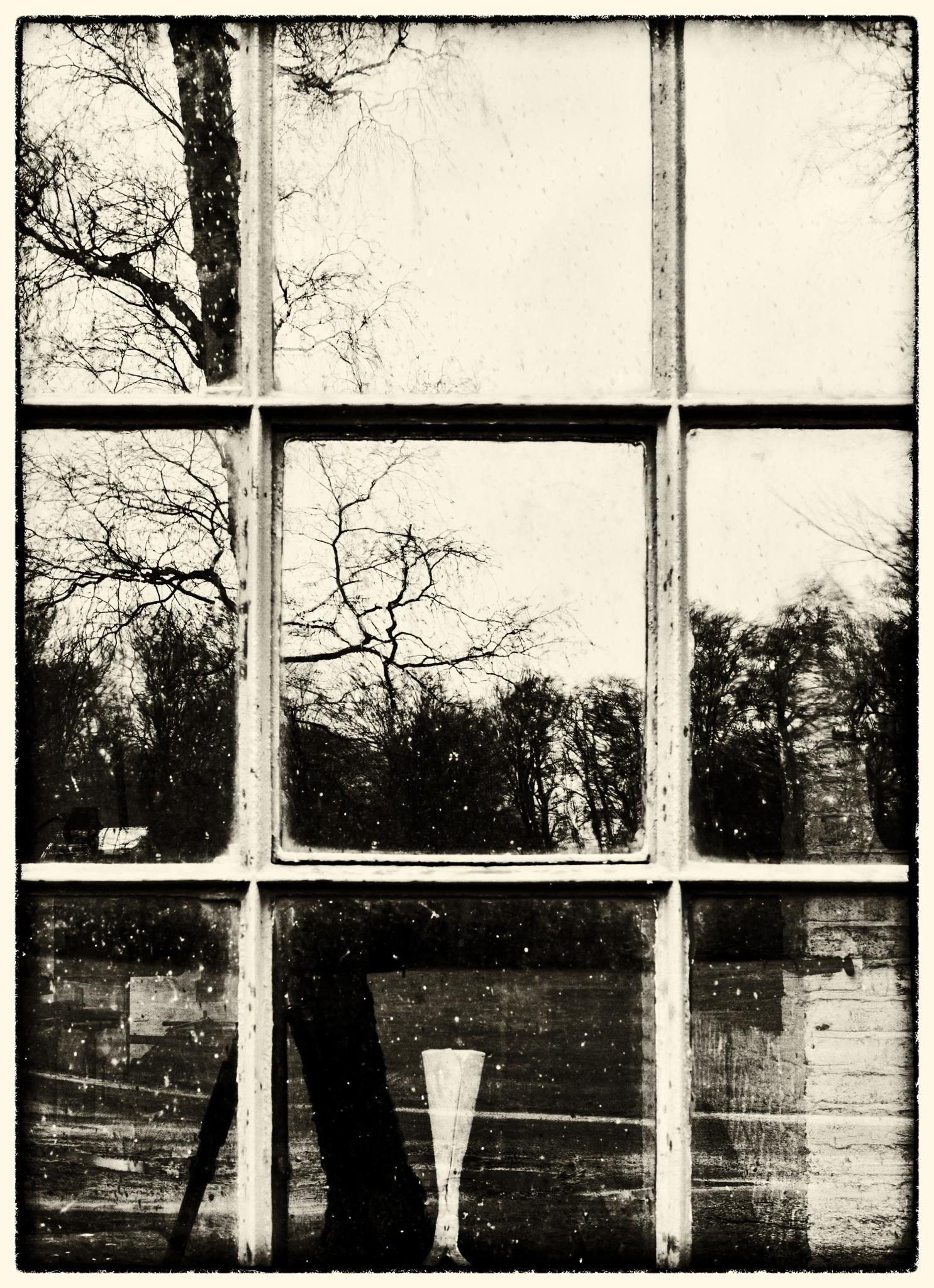 Mirror? by Leif Heering