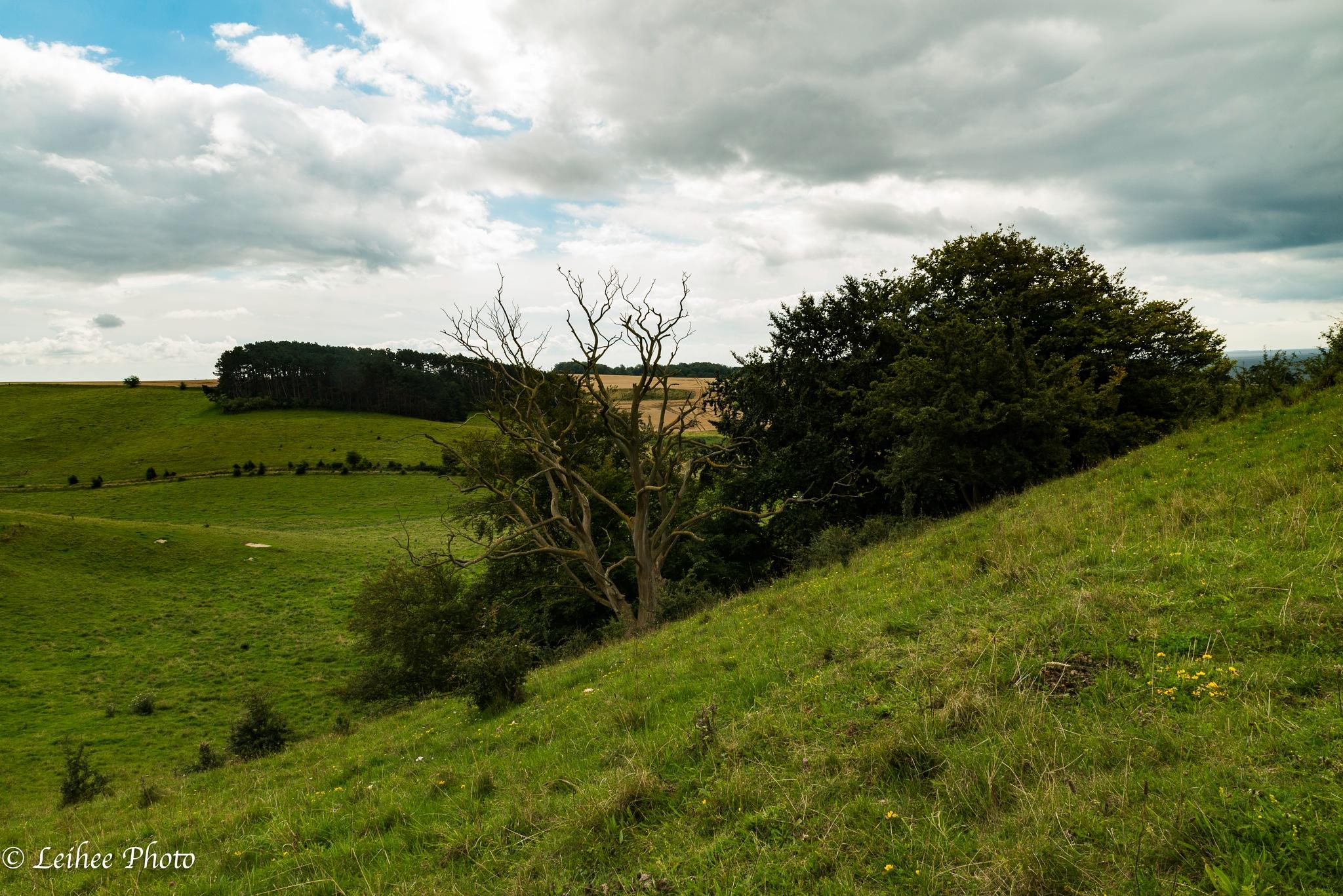 Hilleshögs Valley by Leif Heering