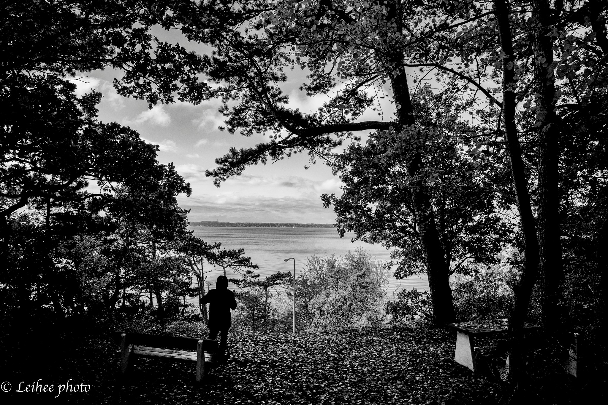 View by Leif Heering