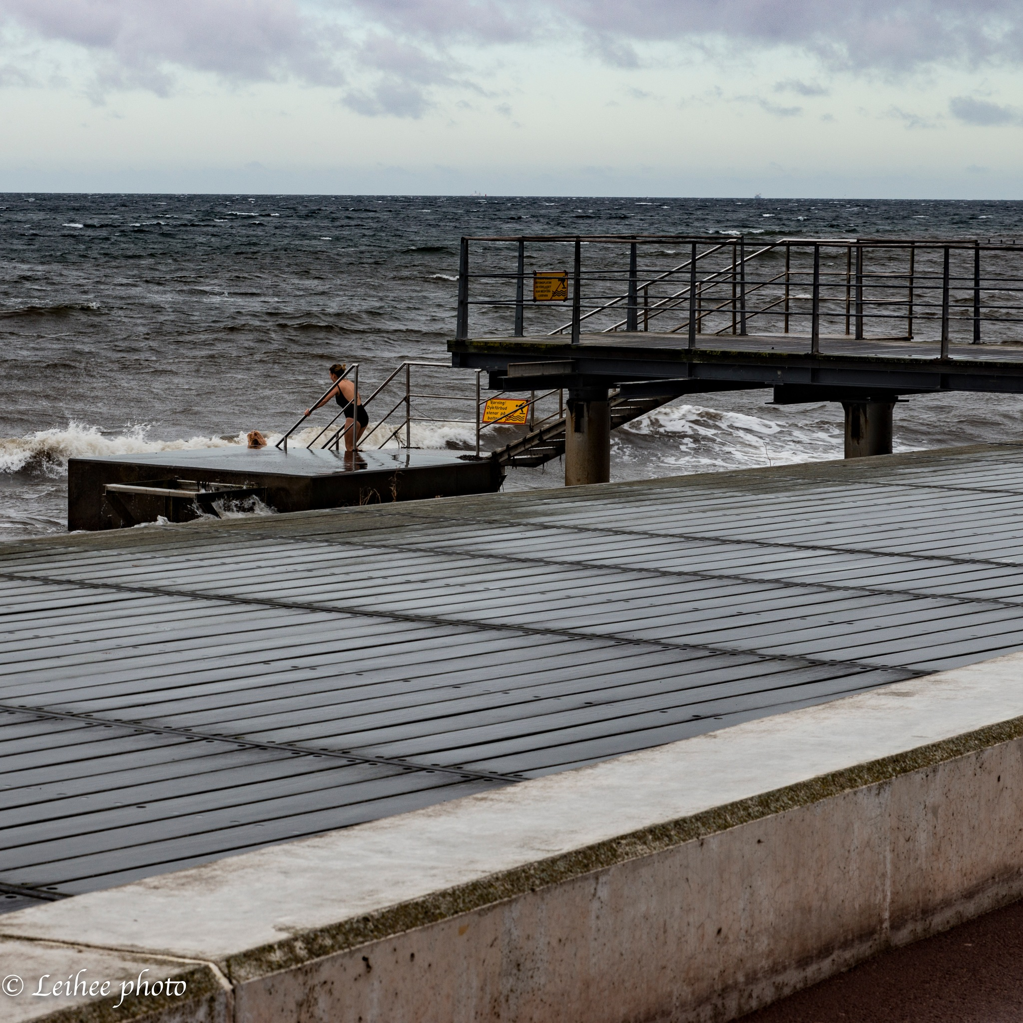 Winter Swimmers by Leif Heering