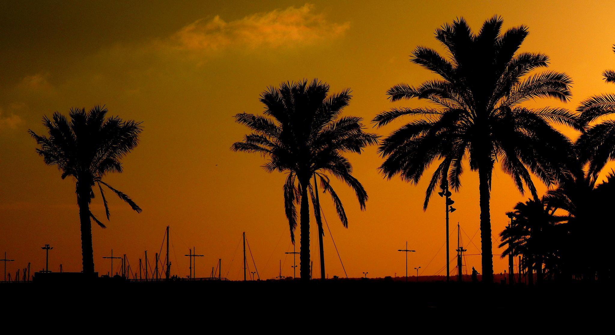 Sunset by Jozsef Keszan