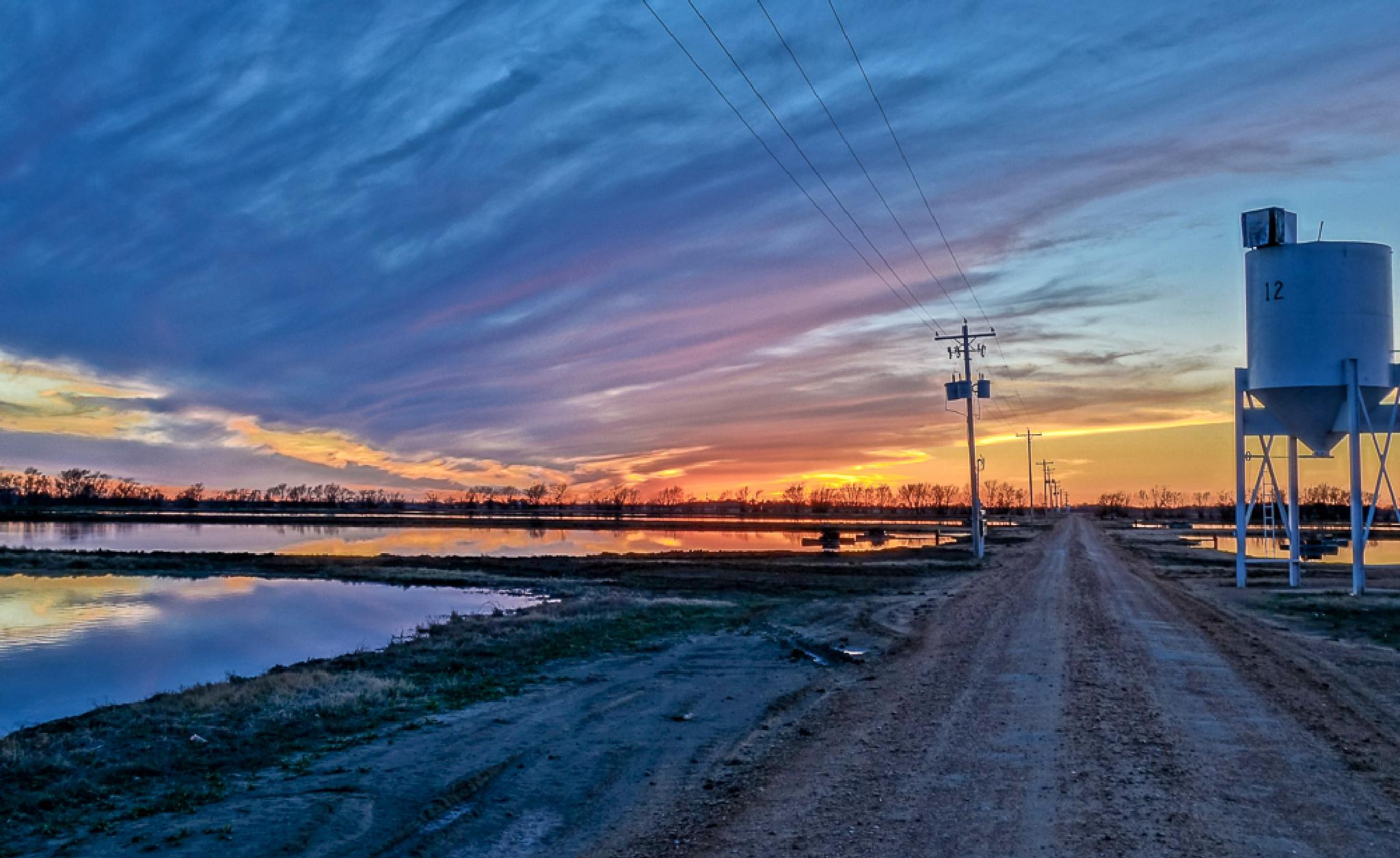 Winter sunset in the fish Farm..!! MS by pescado.feliz