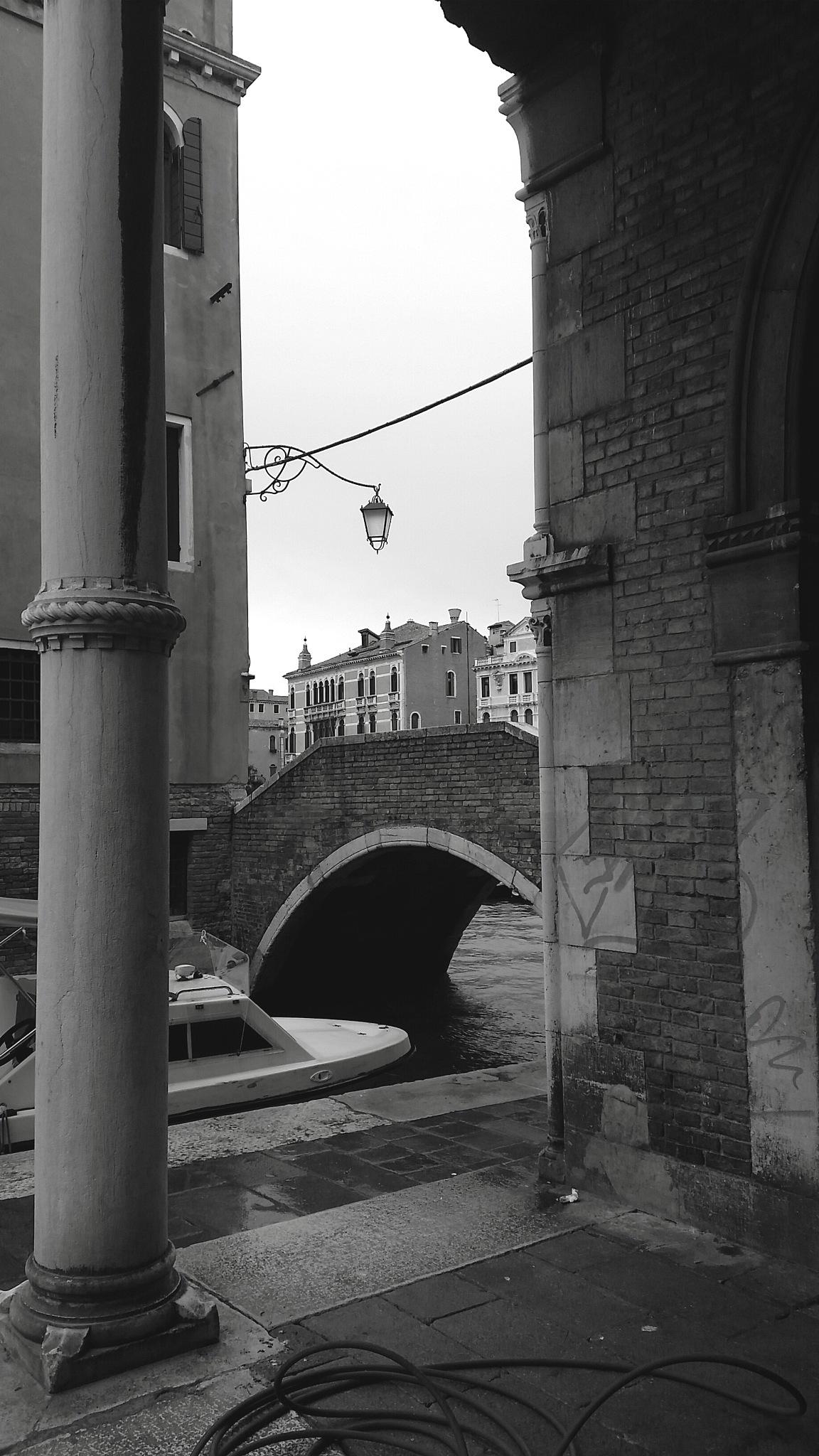 The bridge by danilo.audinino