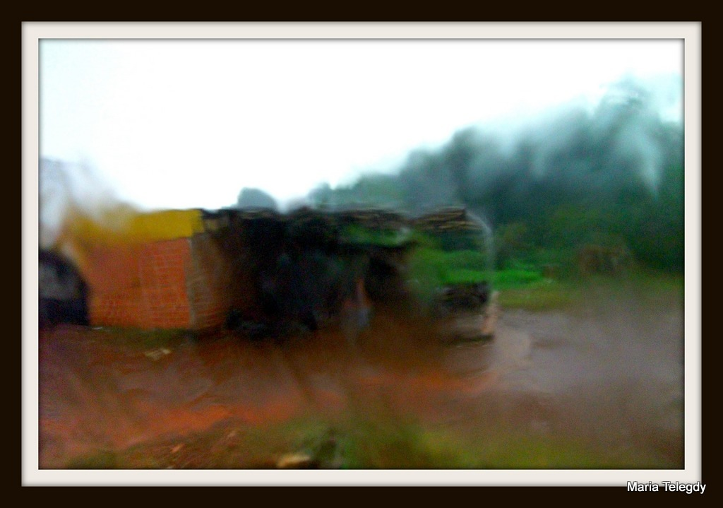 Heavy rain in the jungle by maria.telegdy