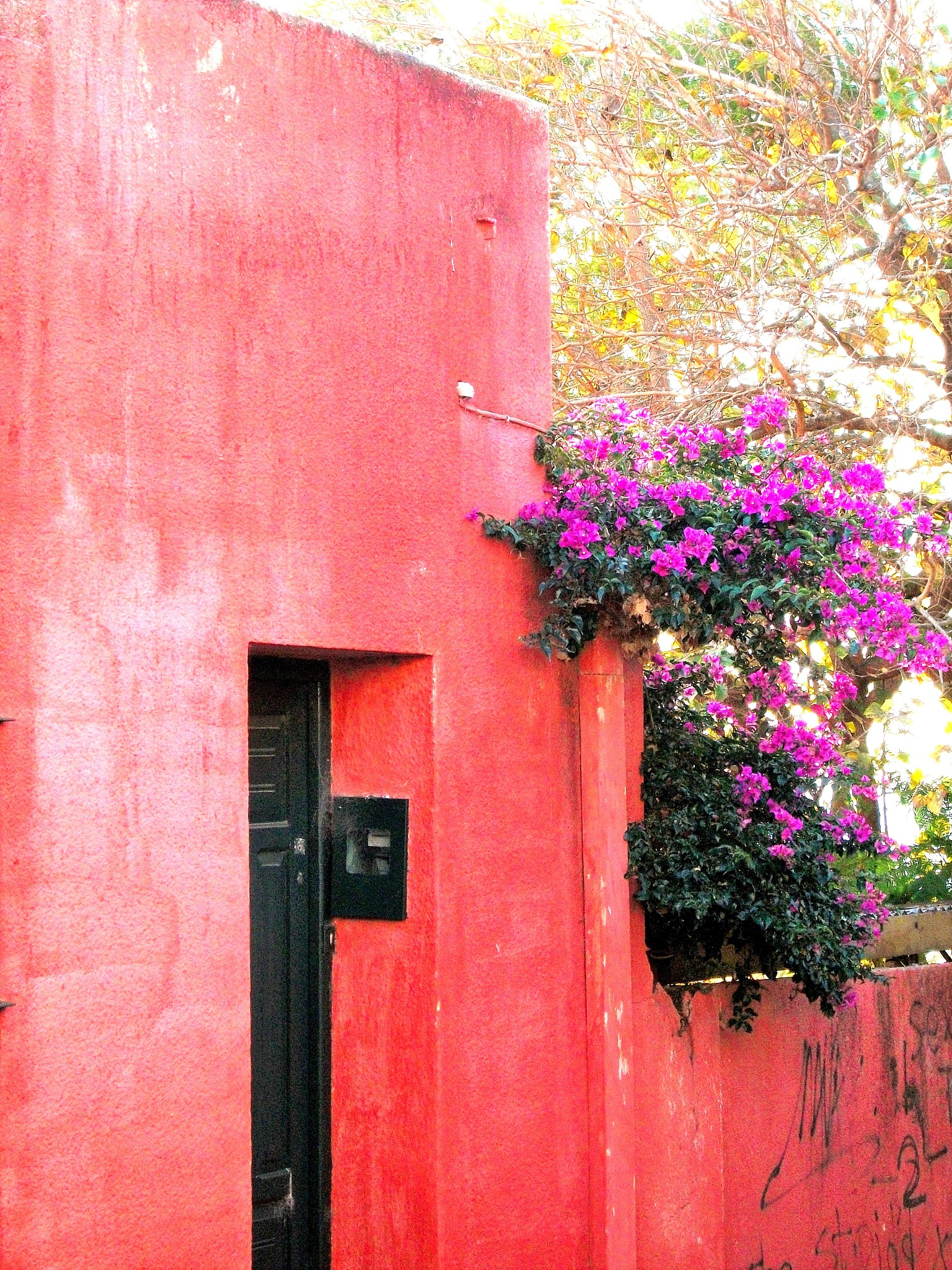 Red house in Colonia by maria.telegdy