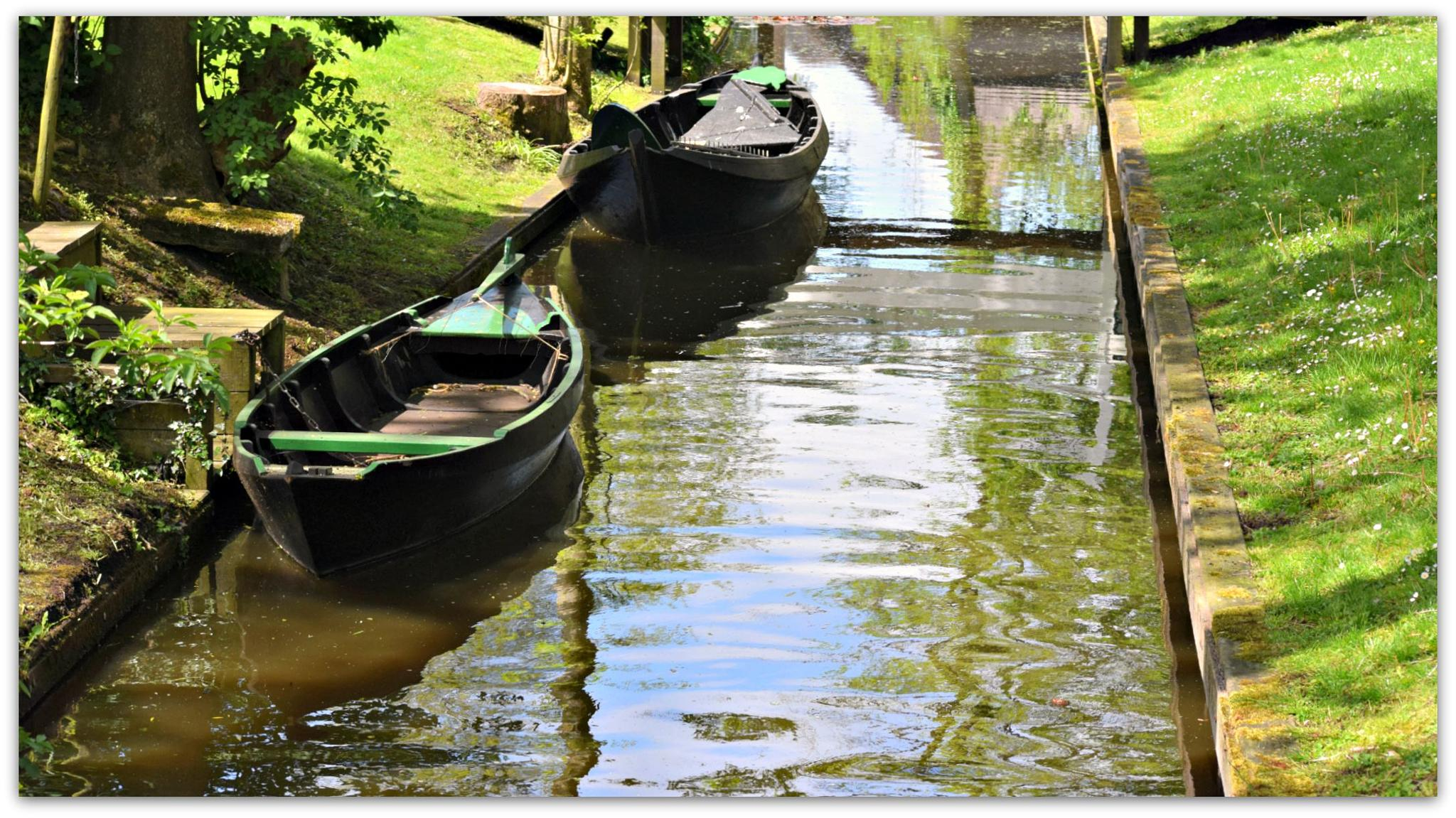 Somewhere in Holland by maria.telegdy