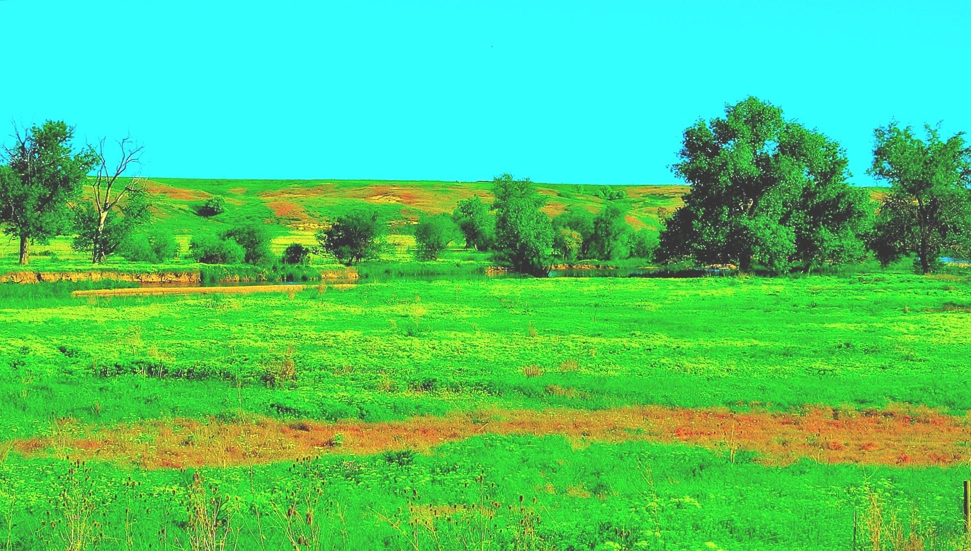 Pretty in green by maria.telegdy