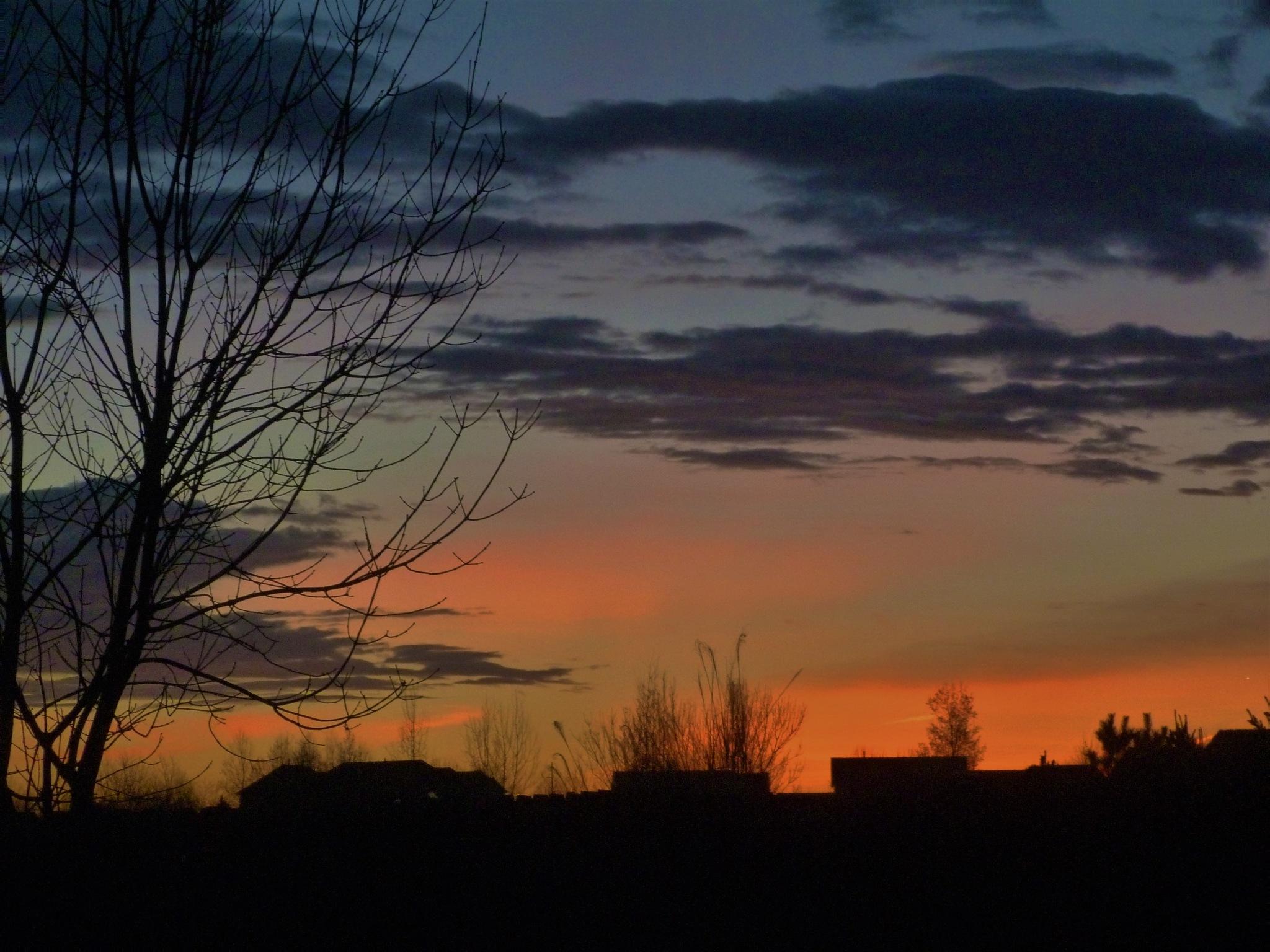 Good morning! by maria.telegdy