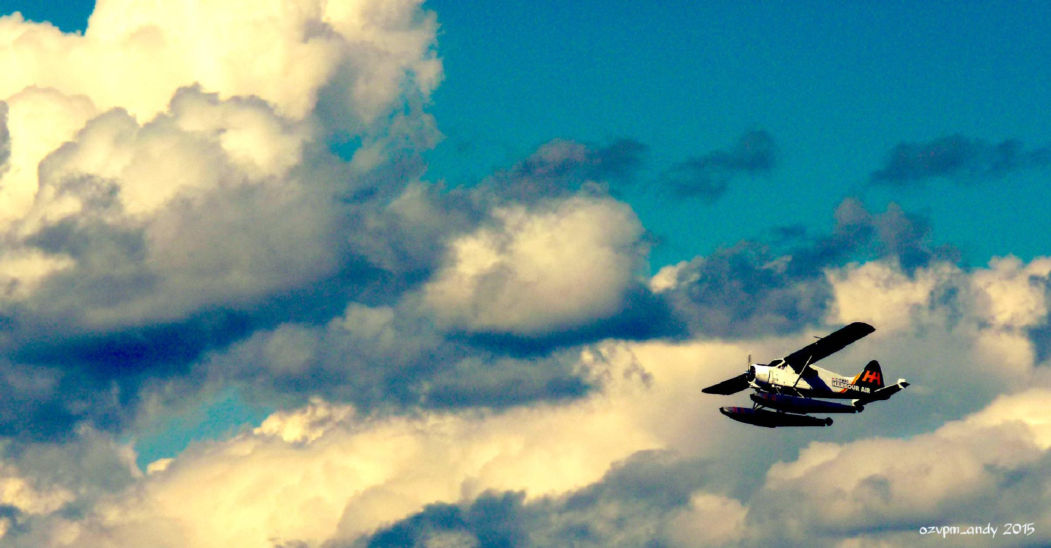 Sea Plane by Andy Fryar
