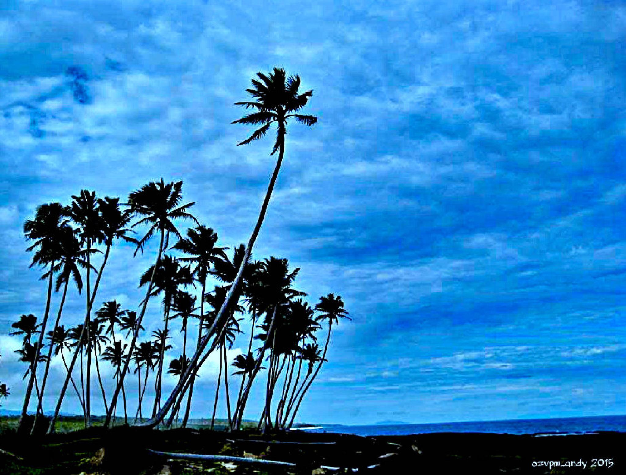 Samoan Oasis by Andy Fryar