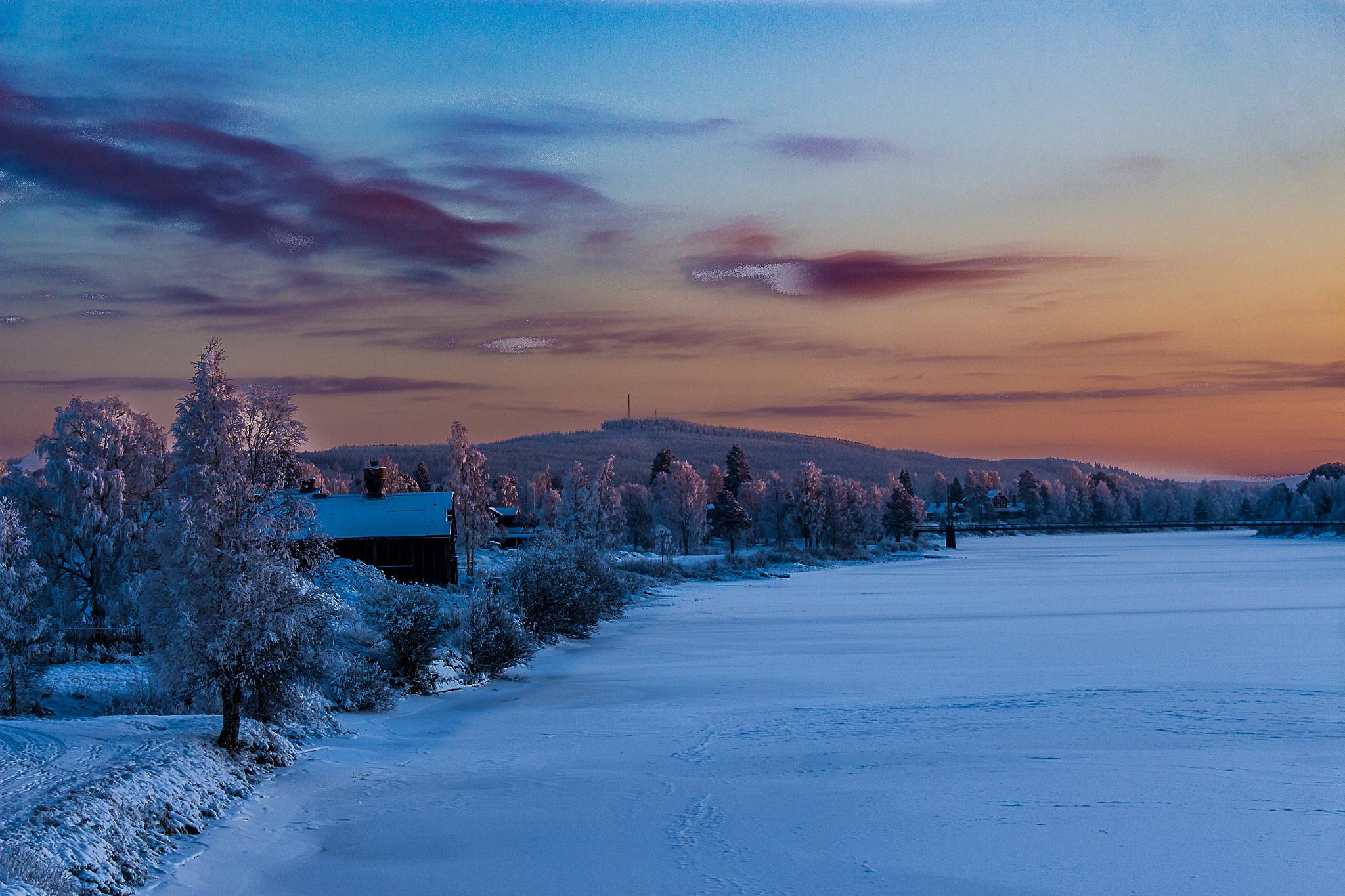 Winter wonderland by Carl Hult