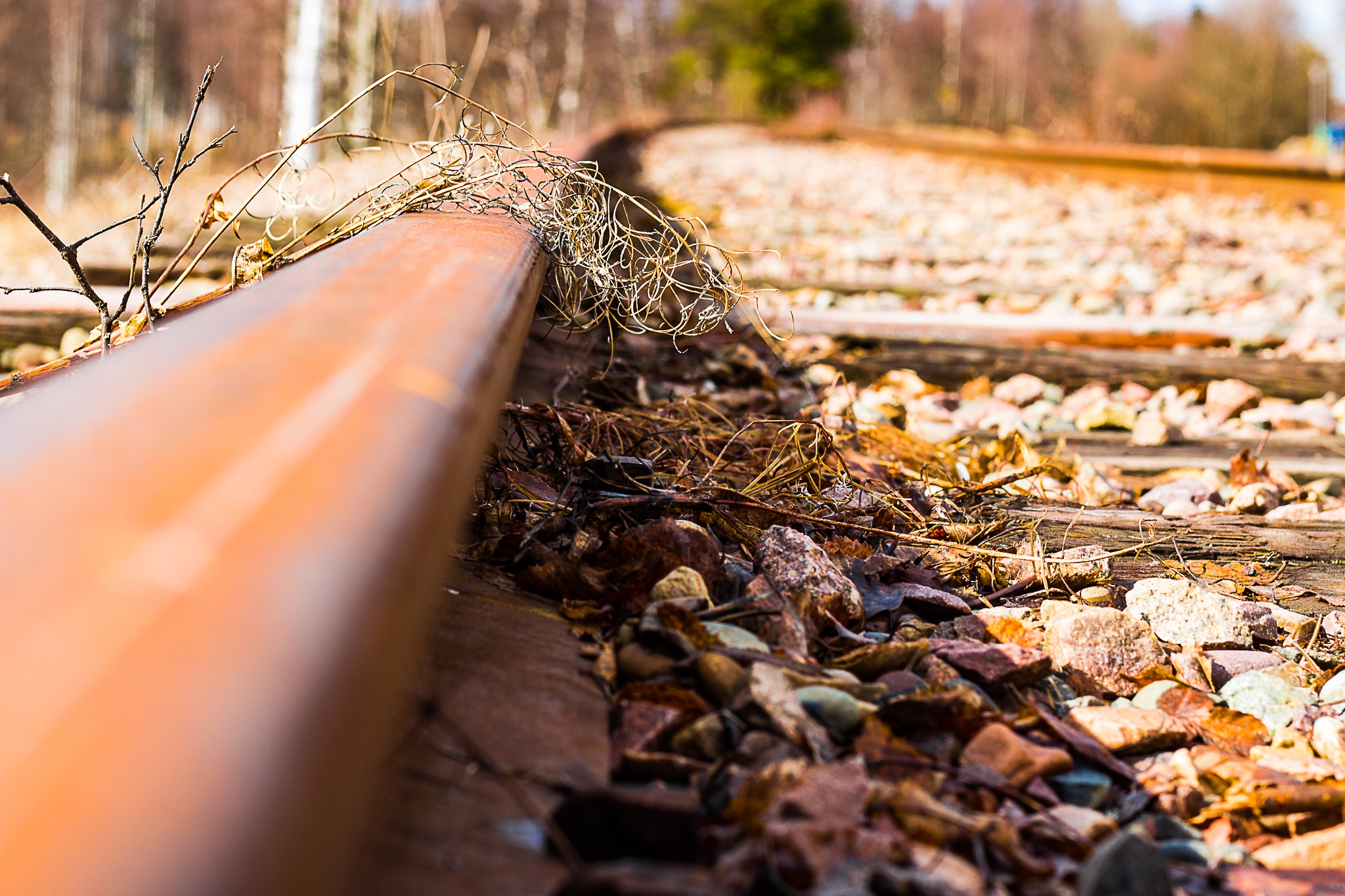 Track me by Carl Hult