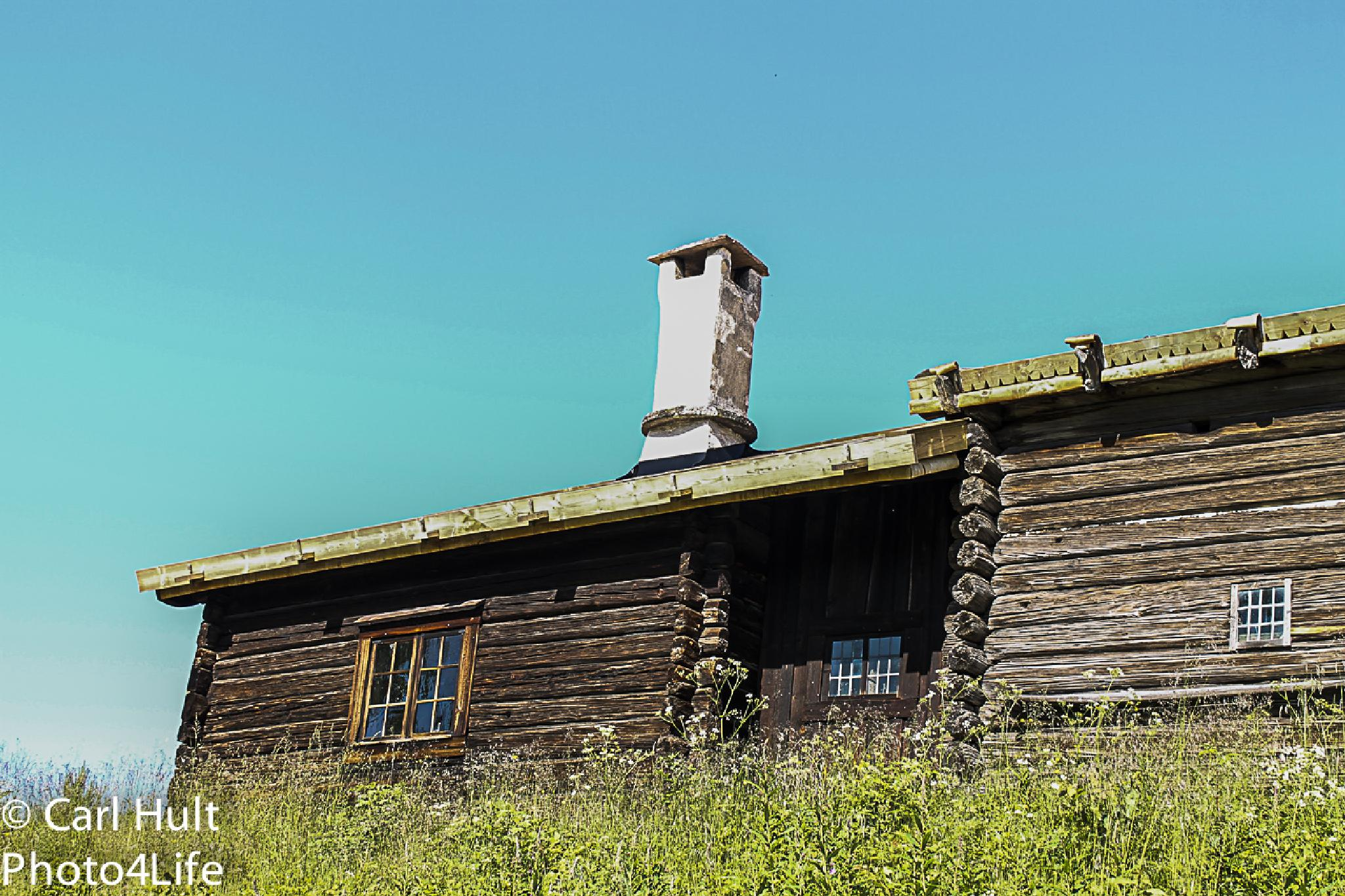 Old farmer's house by Carl Hult