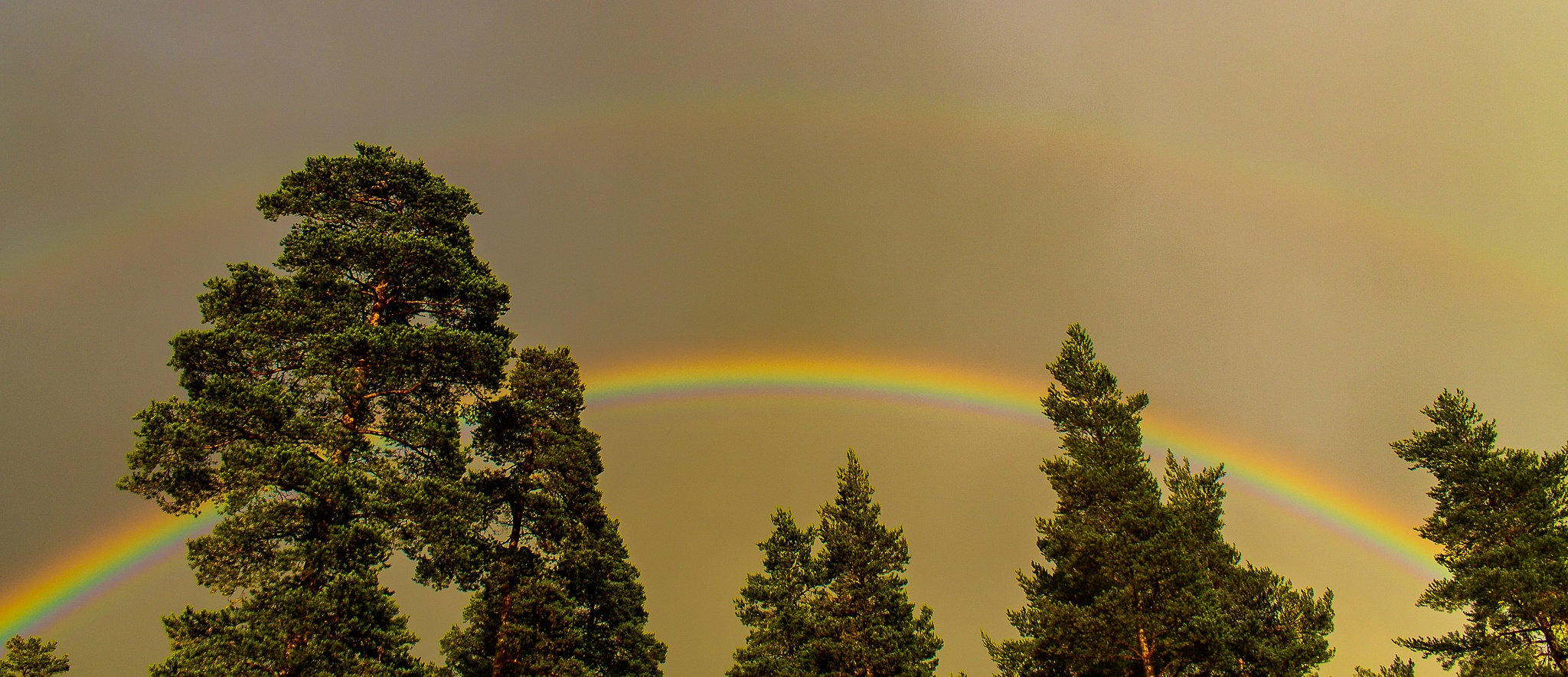 Double Rainbow by Carl Hult