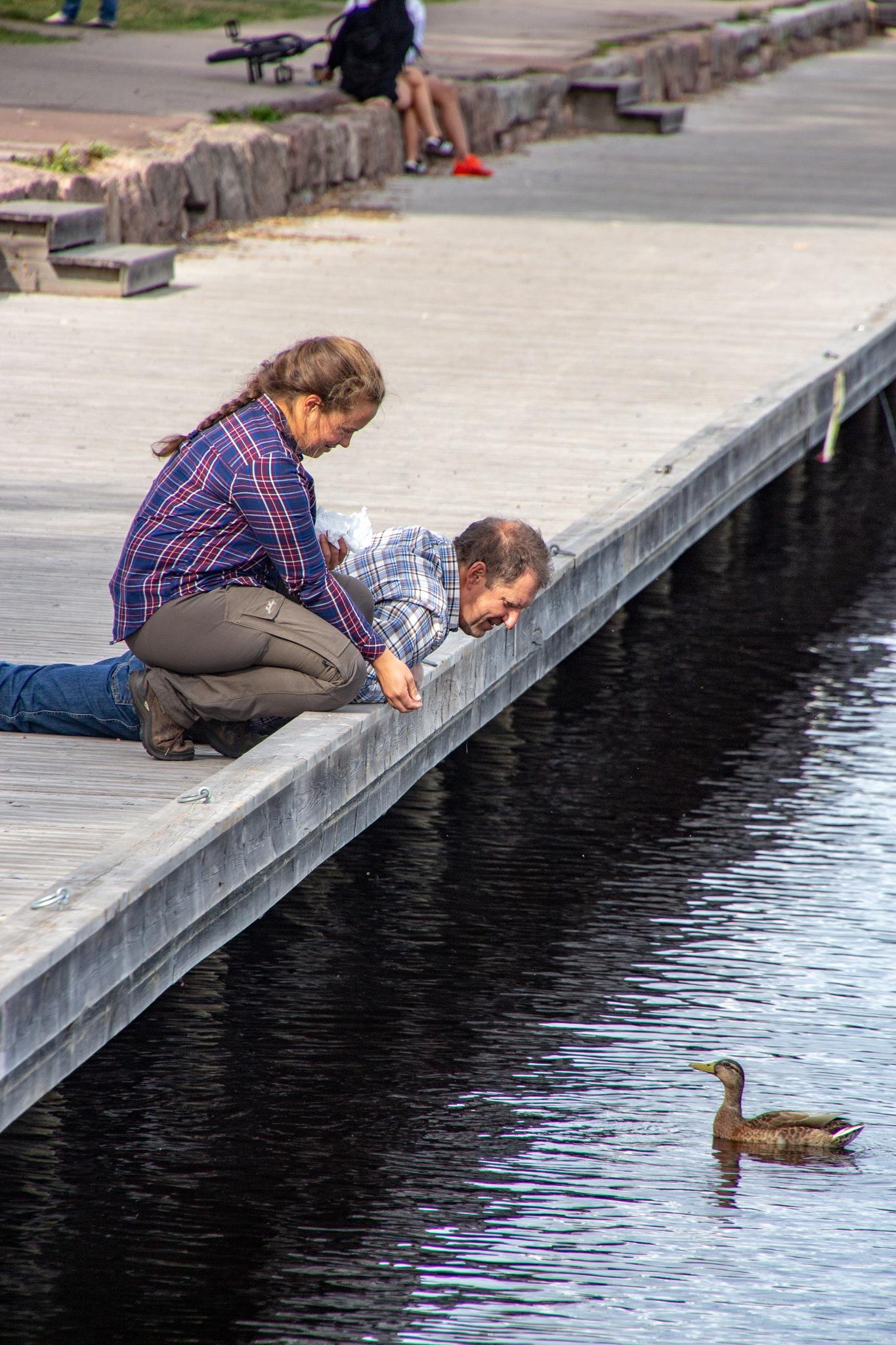Feeding a duck by Carl Hult