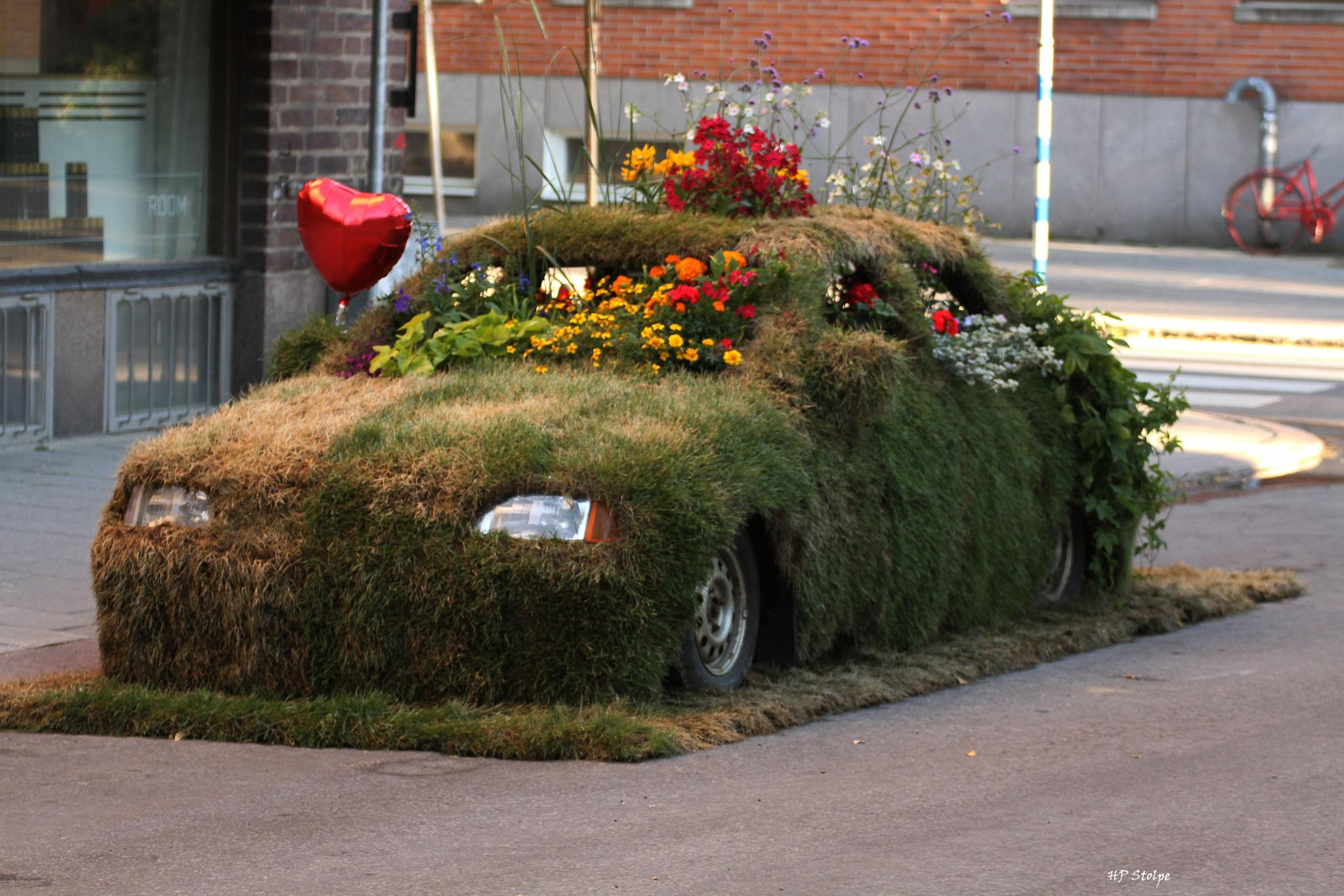 Grass Car by HansPeter Stolpe