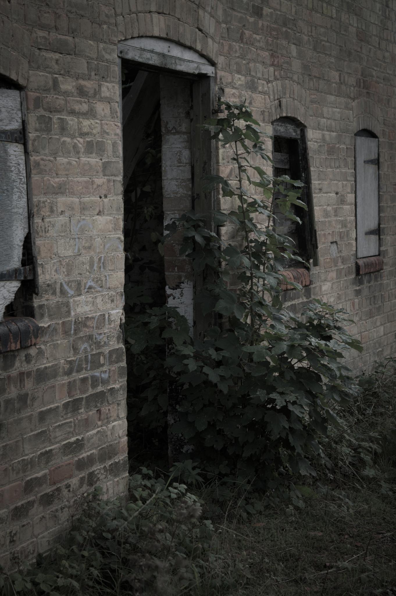 Derelict Manor Door by Sam Hockaday