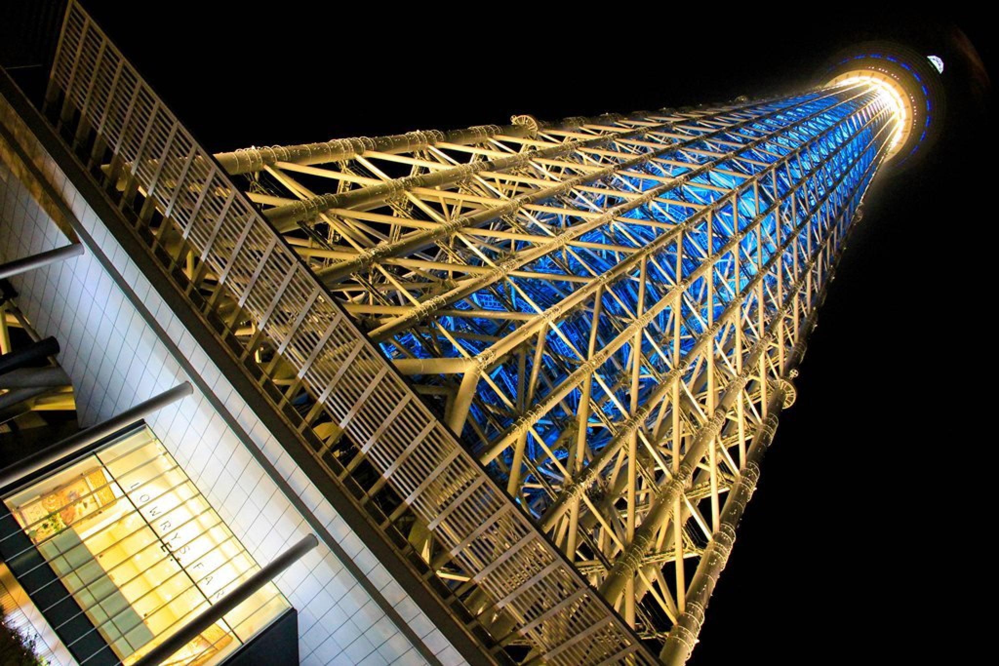 Skytree by Pēteris Vaivars