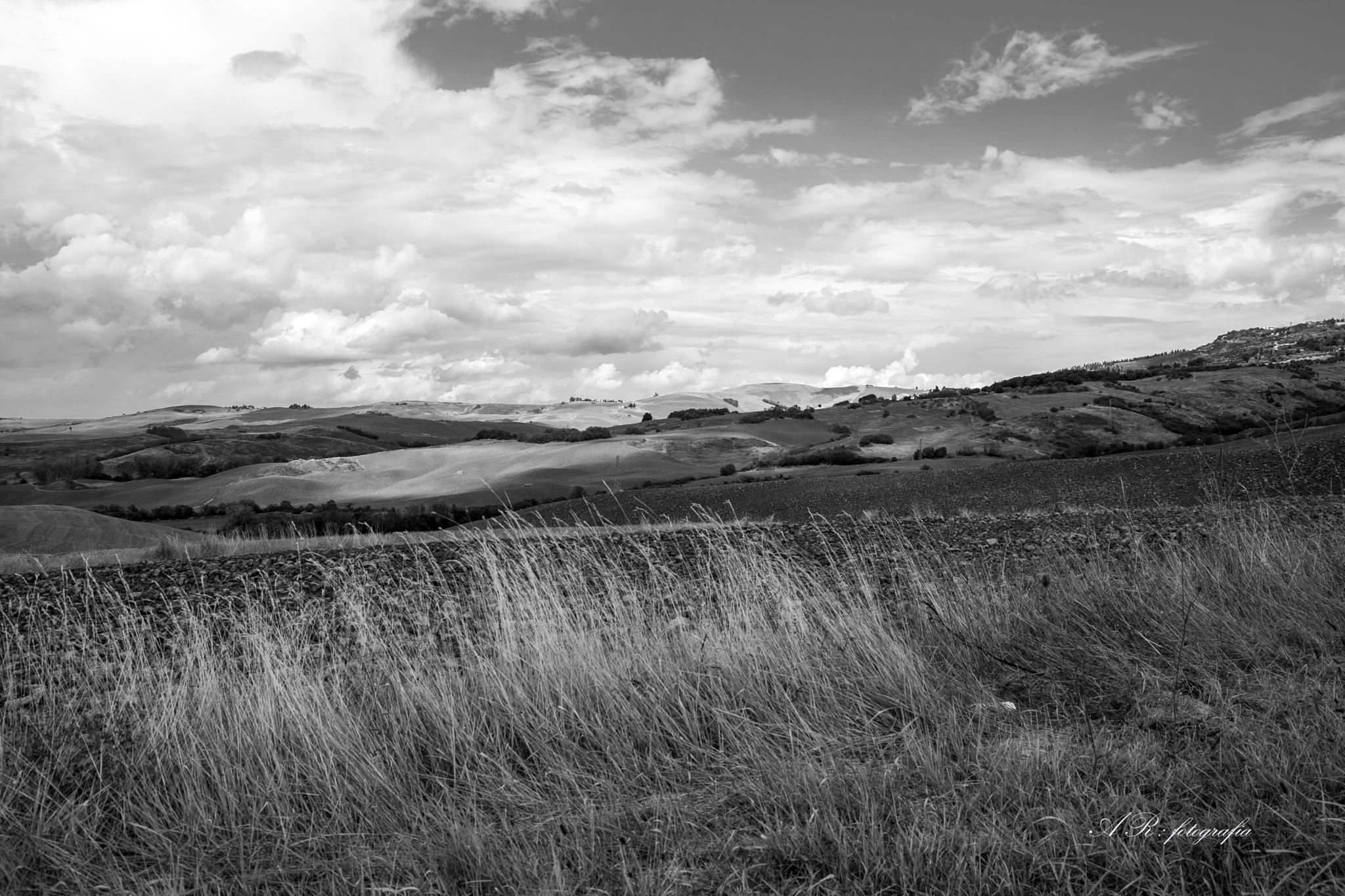 Tuscan hills (landscape) by adriano.rossi.7965