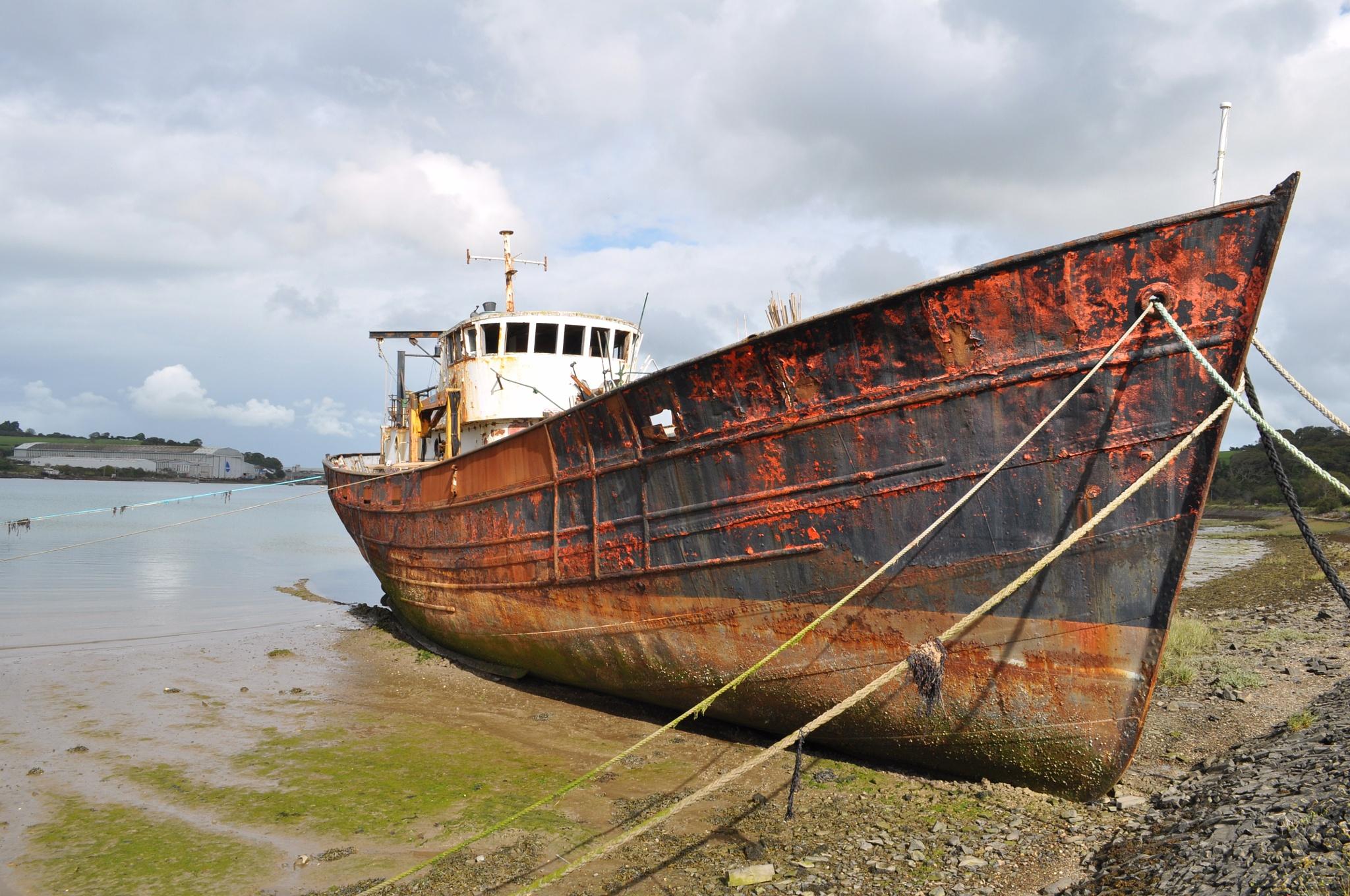 Estranged in an estuary 2 by RobJames66