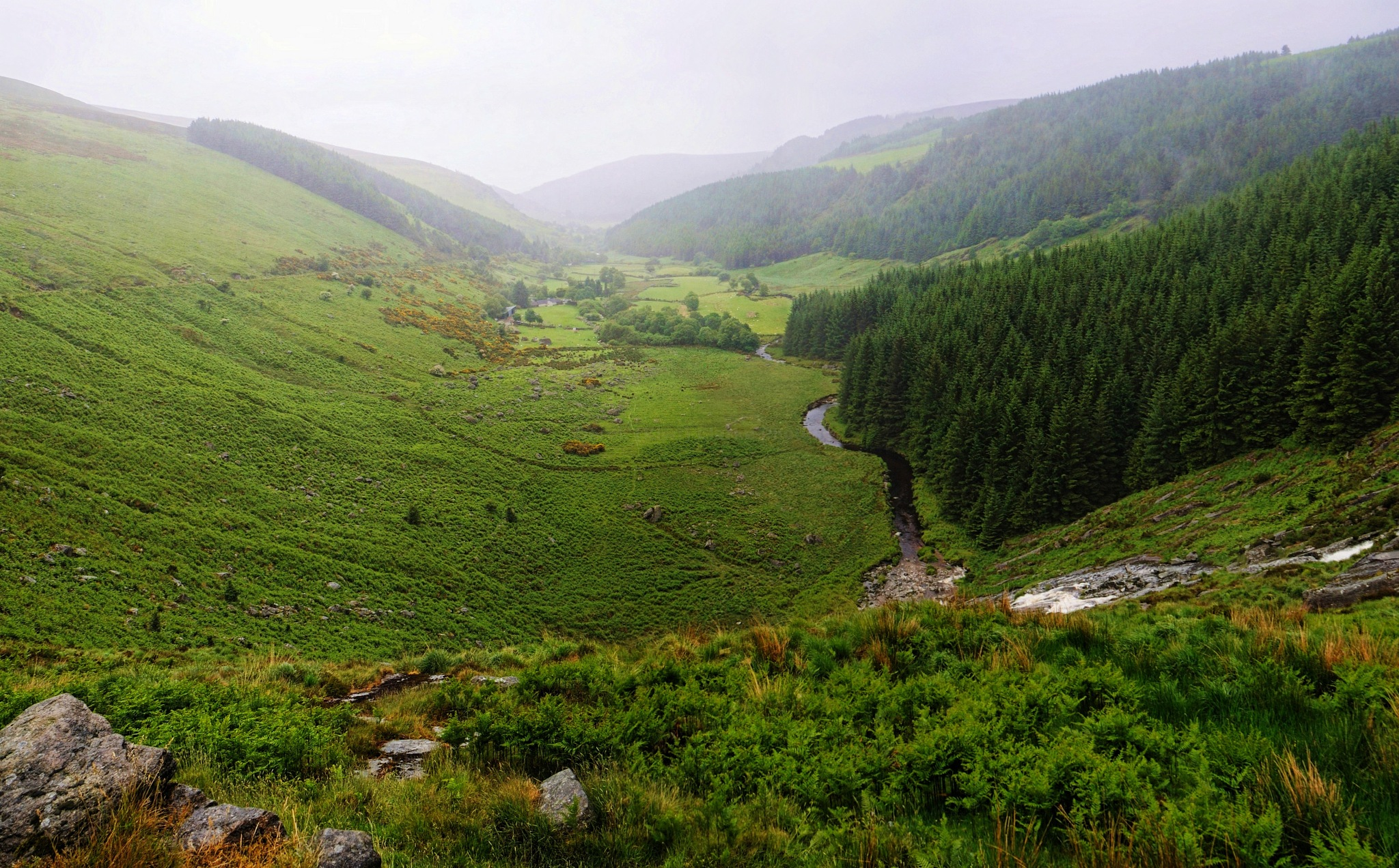 Panorama (71) - Wicklow Gap (June 2013) (1) by Derek Clarke