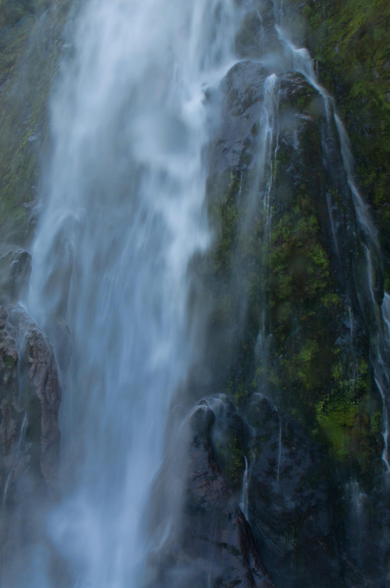 Scenic Milford Sound by Derek Clarke