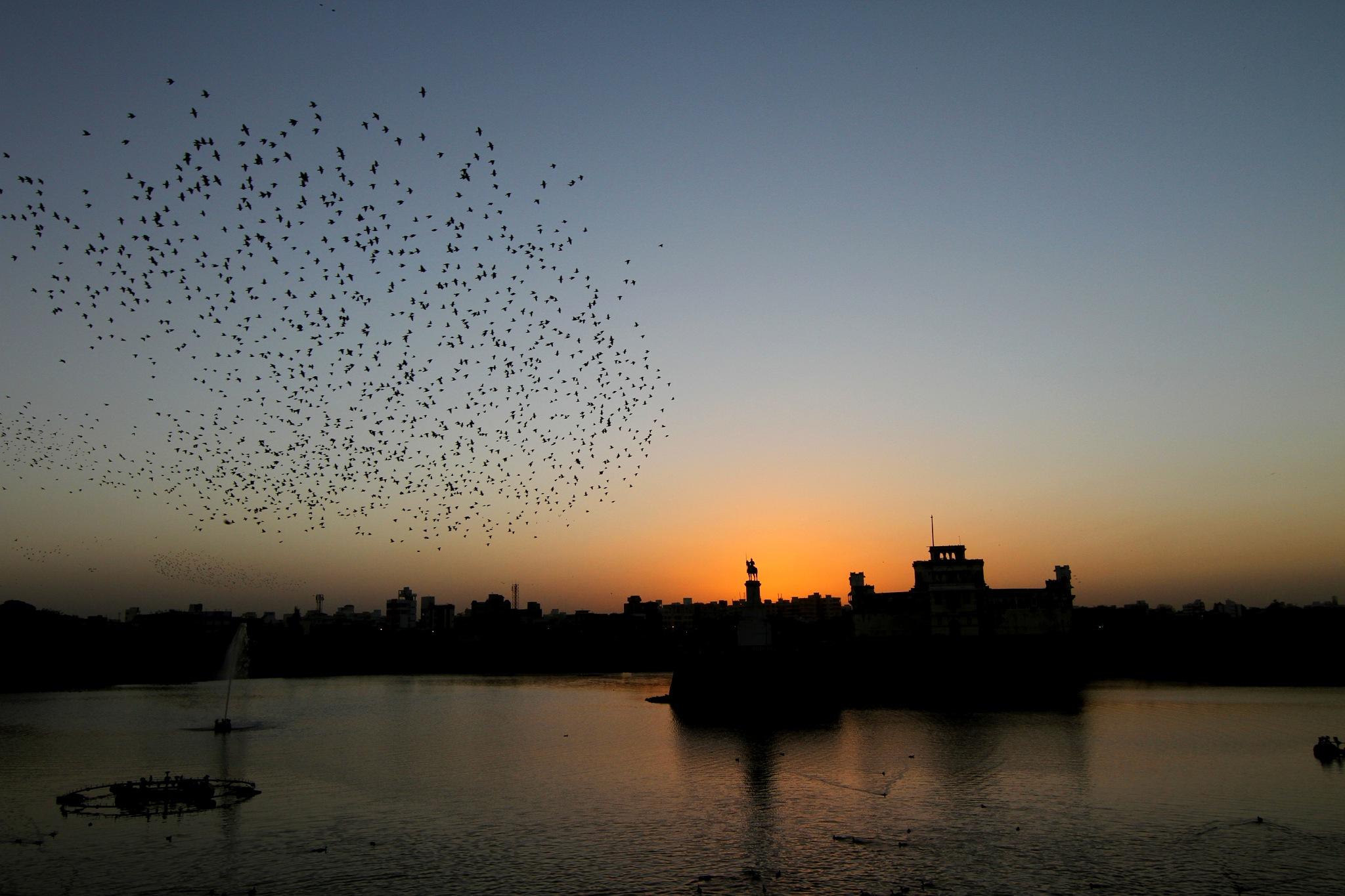 Beautiful Evening @ Lakhota Lake Jamnagar by NIRAJ MEHTA