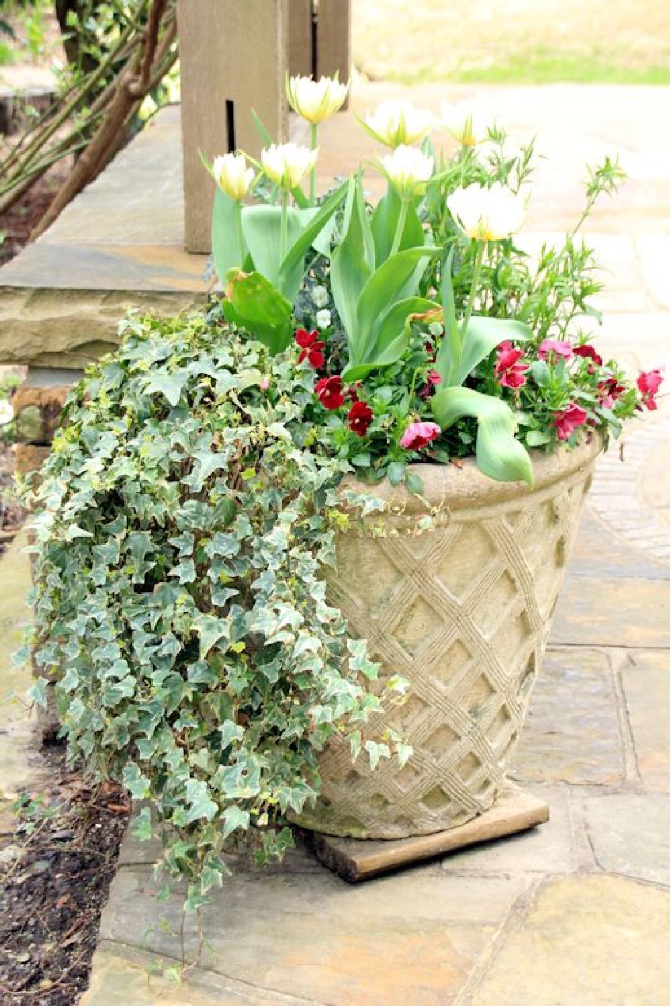 Flowers Pot by dubblybubbly51