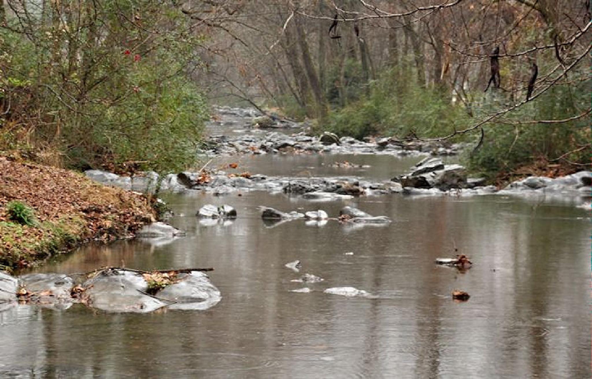 Up the Creek by dubblybubbly51