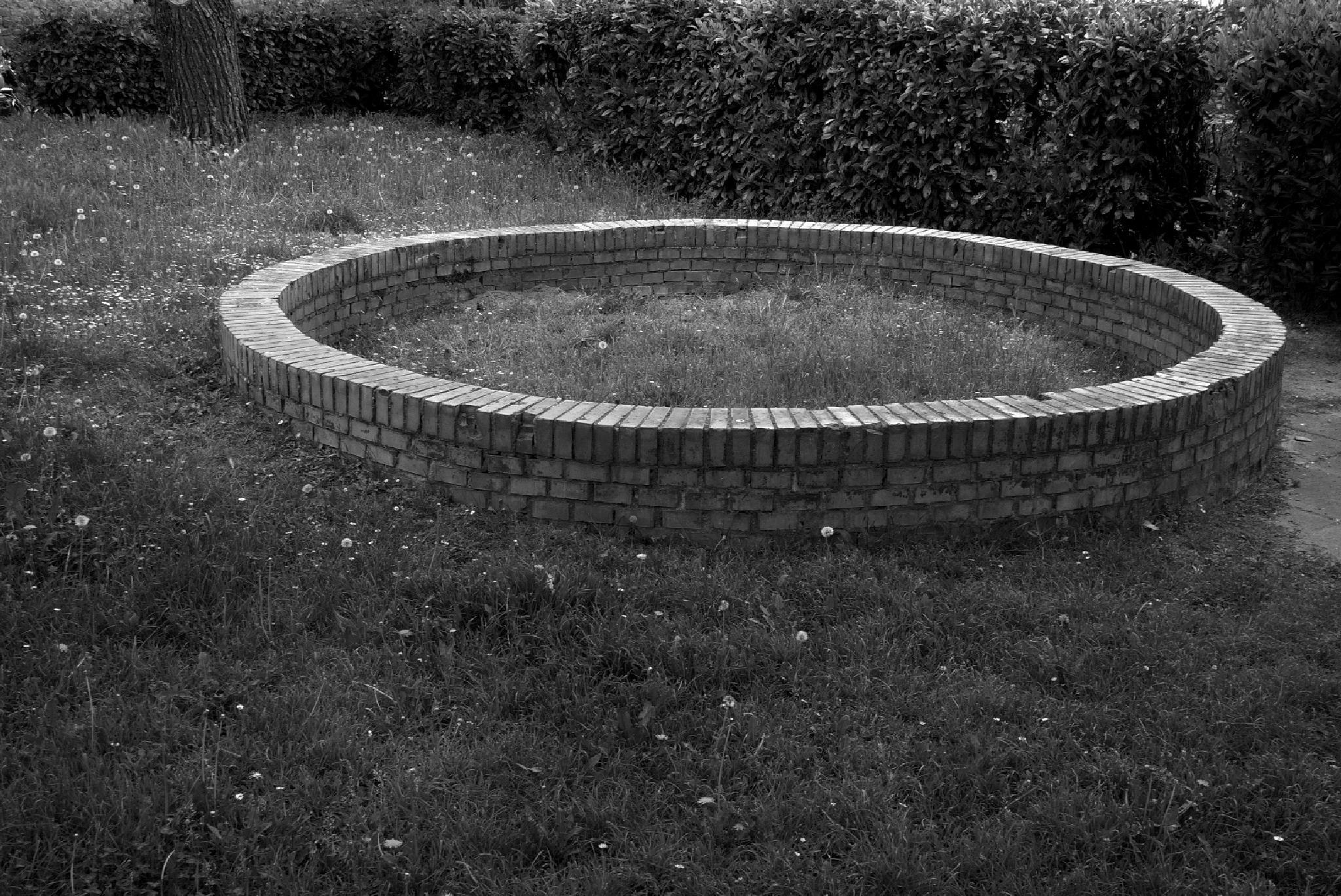 circle by nevada749