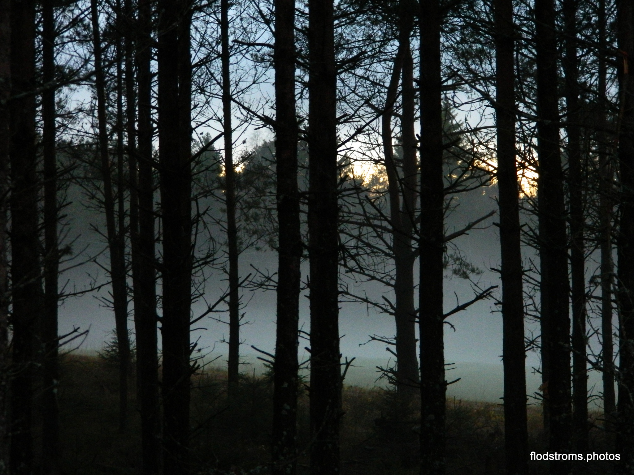 Untitled by Agneta Flodström