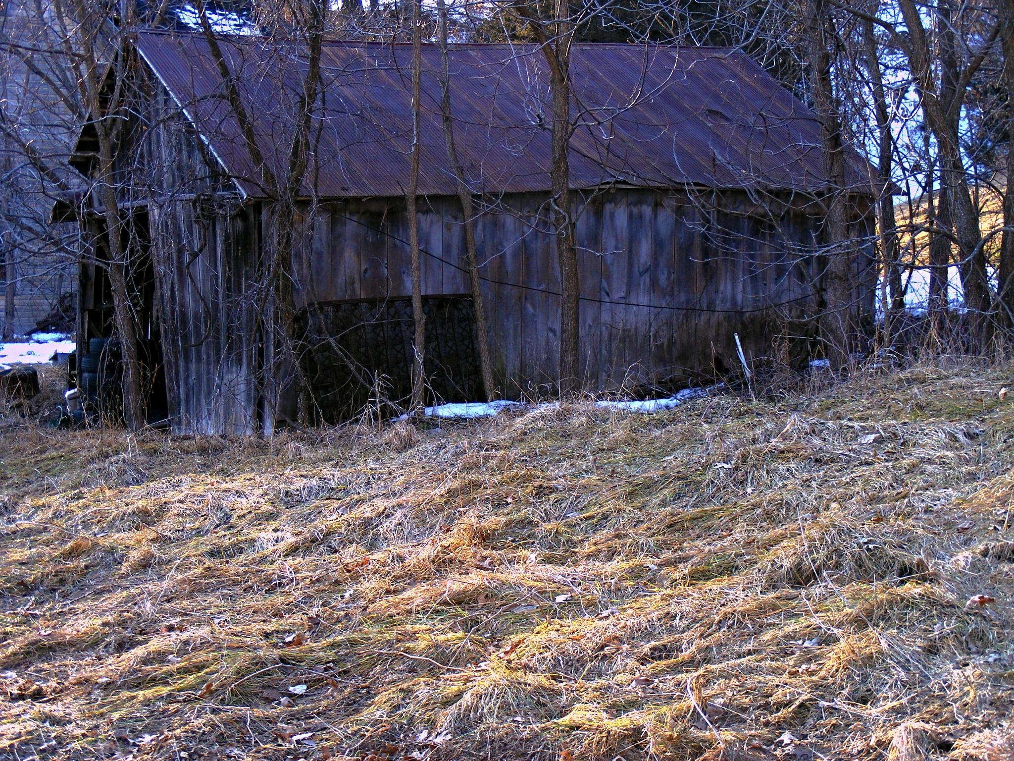 Old Tin Roof... by Buffalo