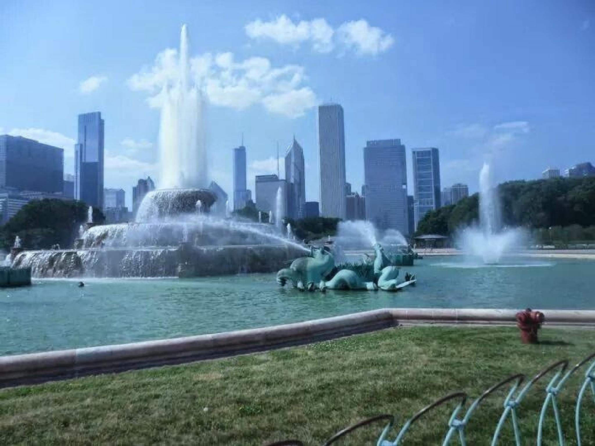 Buckingham Fountain by jessica.k.whitehead1