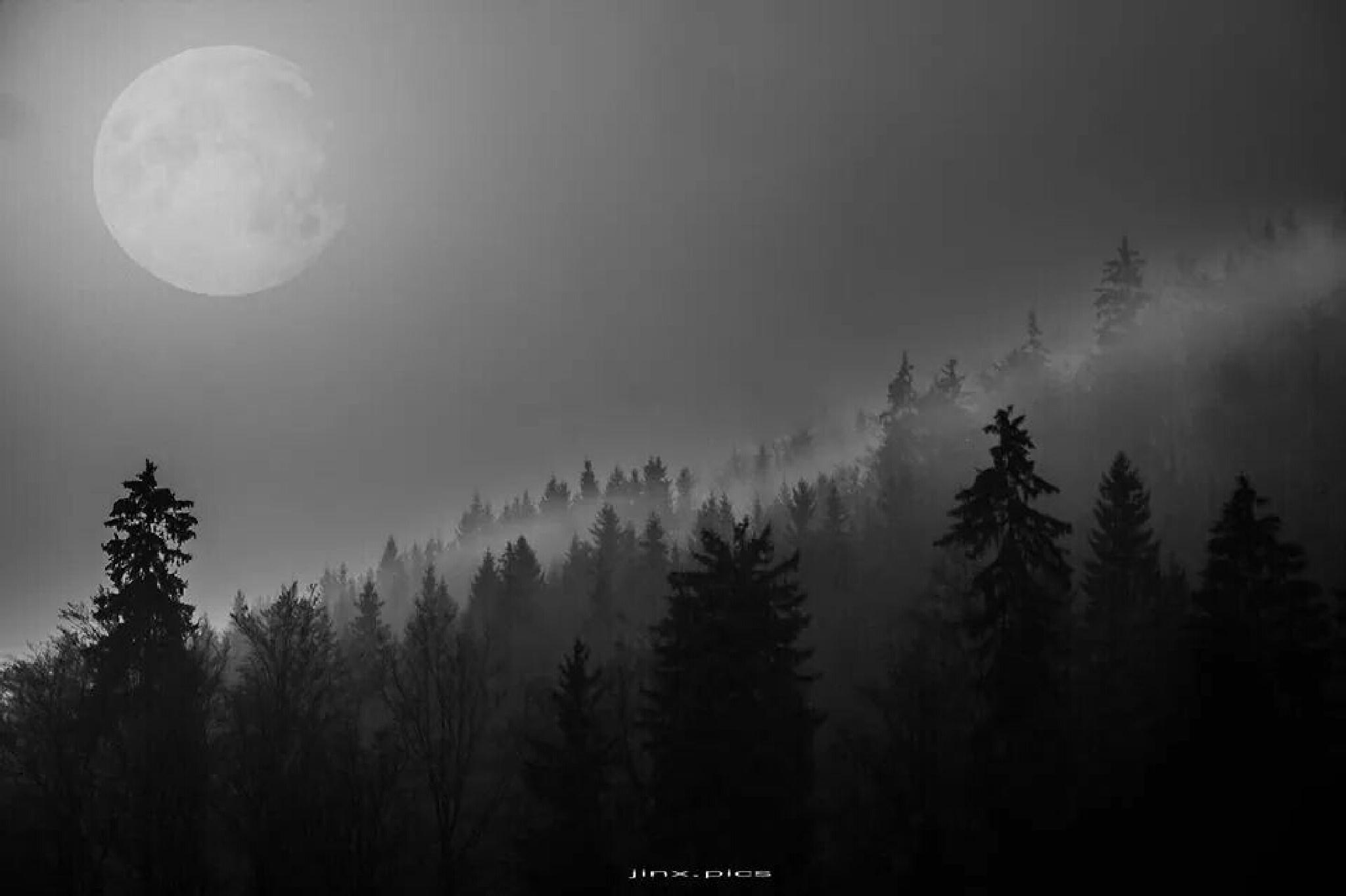 moon.light by sqeen.jinx