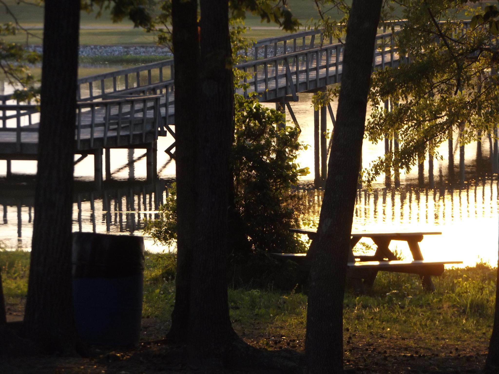 Park in Pell City, Alabama by lisarobertsbell