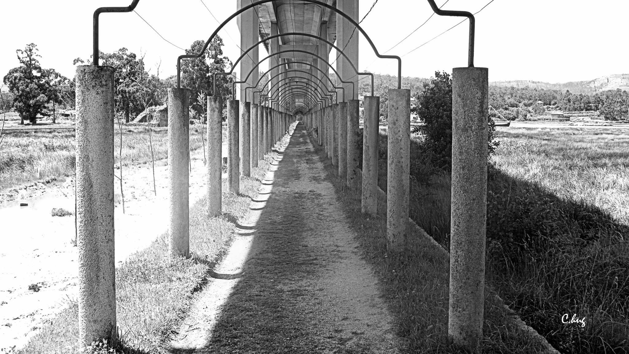 Chemin ombragé by Huguenin Claude