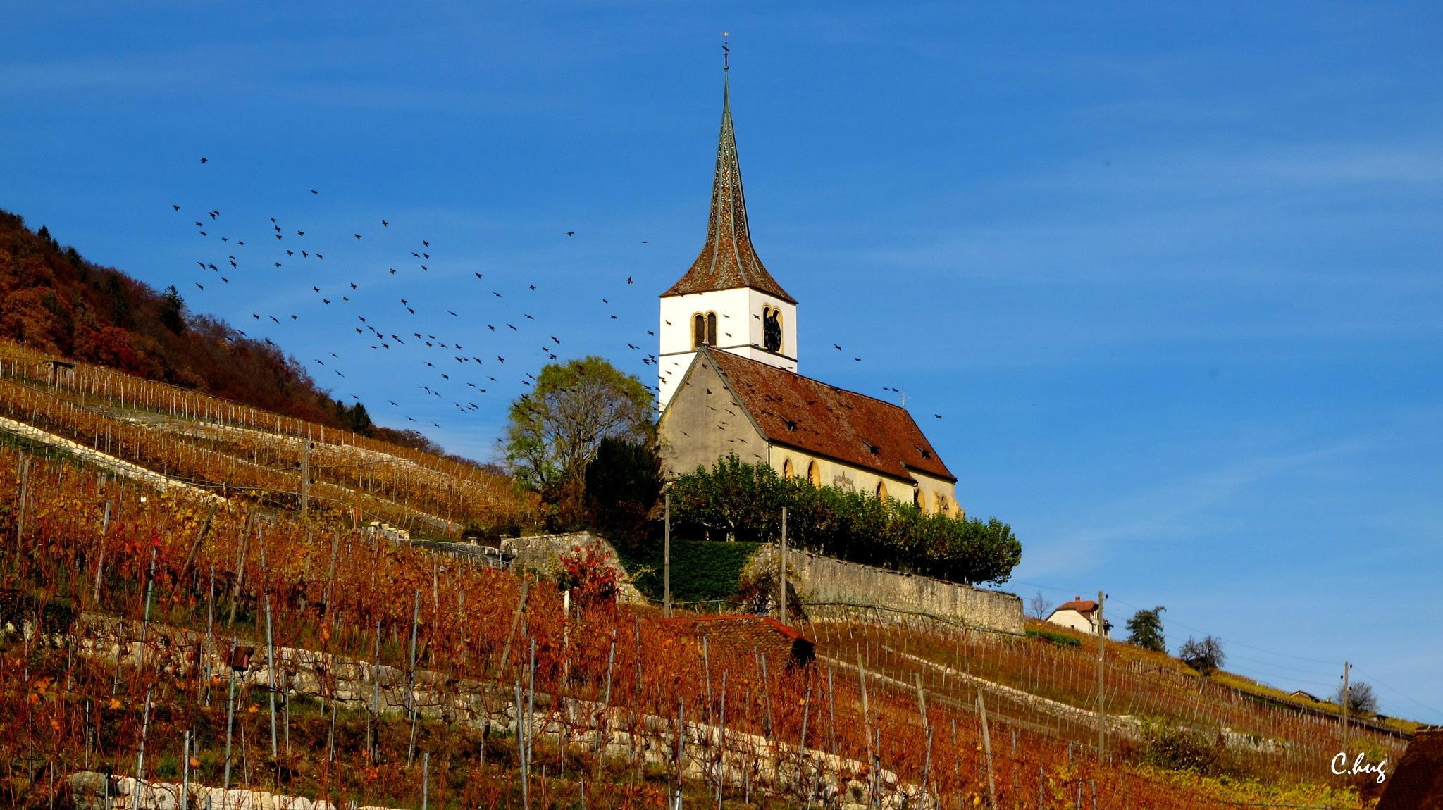 Eglise de Ligerz  by Huguenin Claude