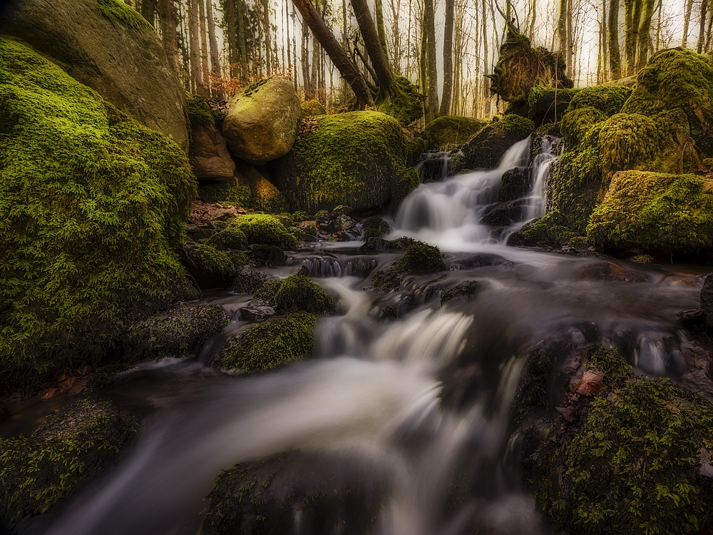 Creek at spring by Peter Samuelsson