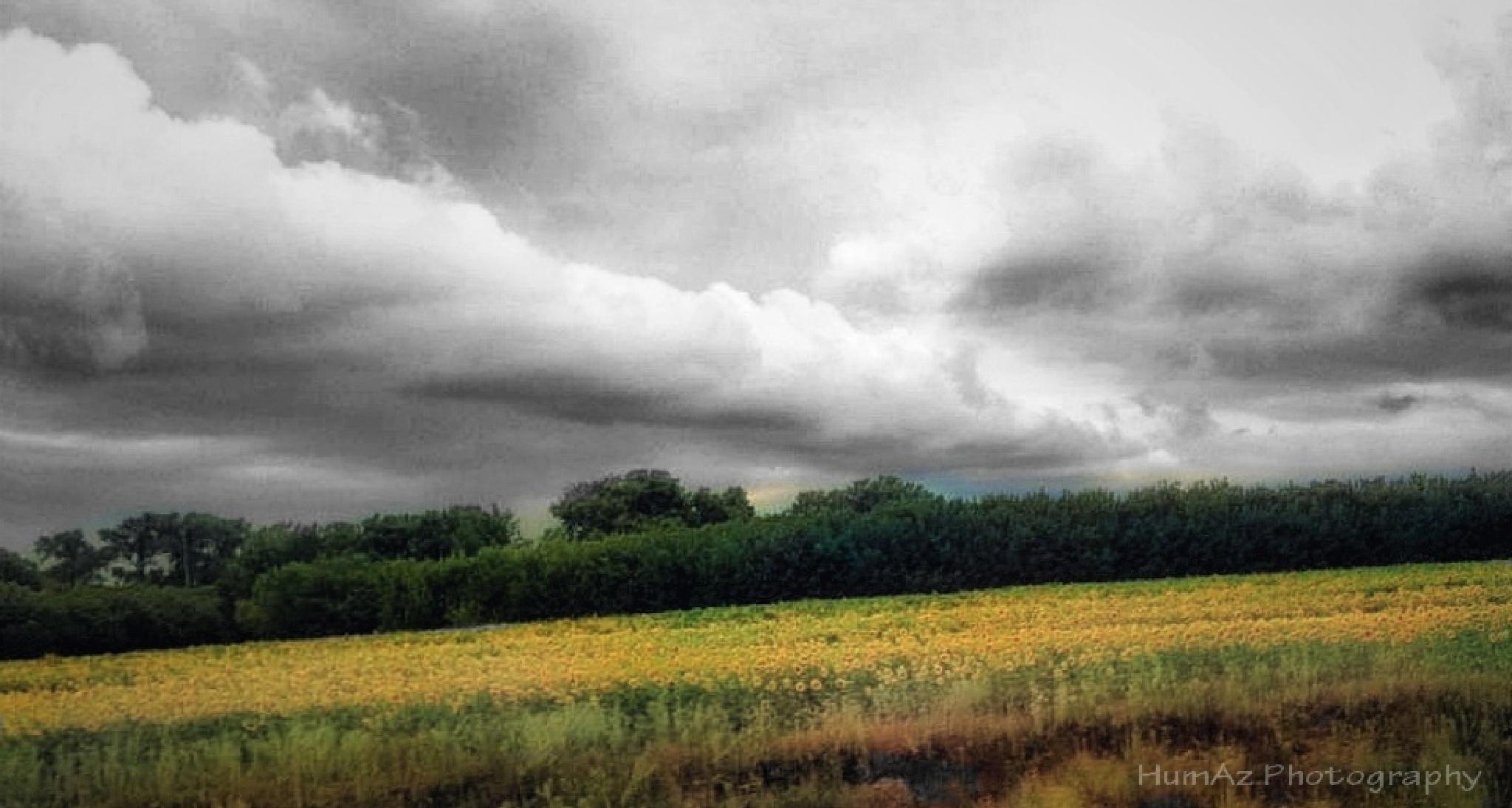 Cloudy Train 2 by Huma Azeem