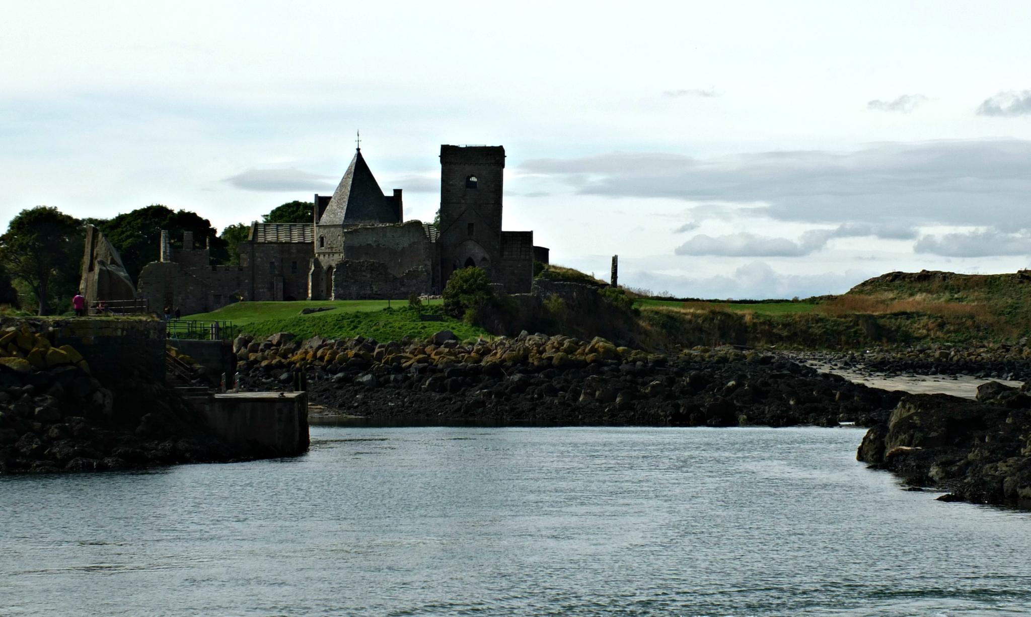 Inchcolm Island, Firth of Forth, Scotland by Cora