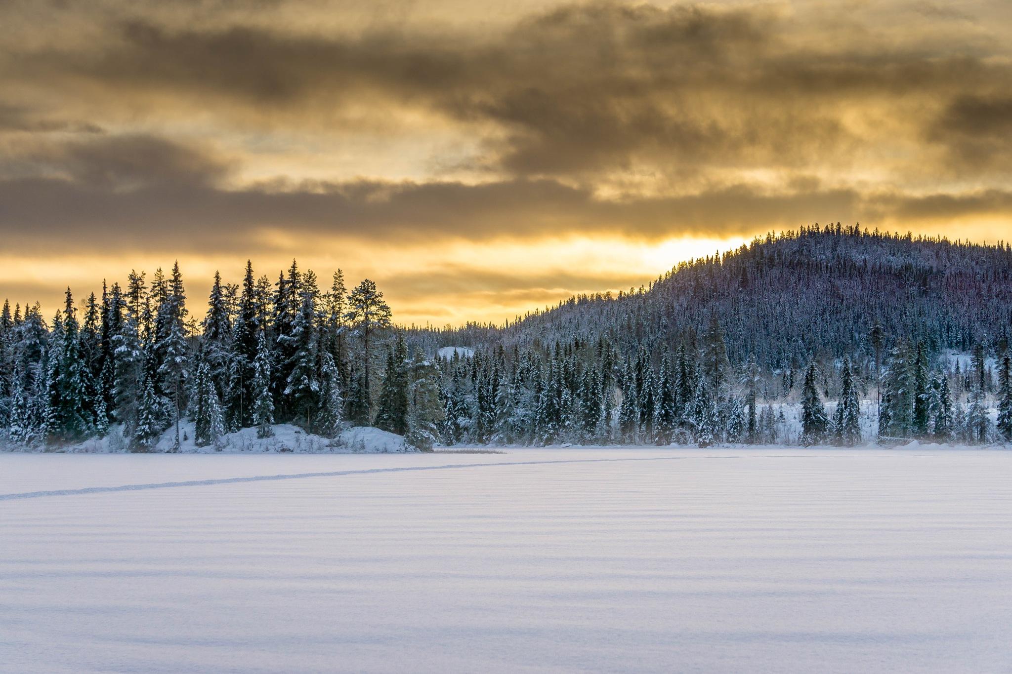 A short day by Carl Göran Olsson