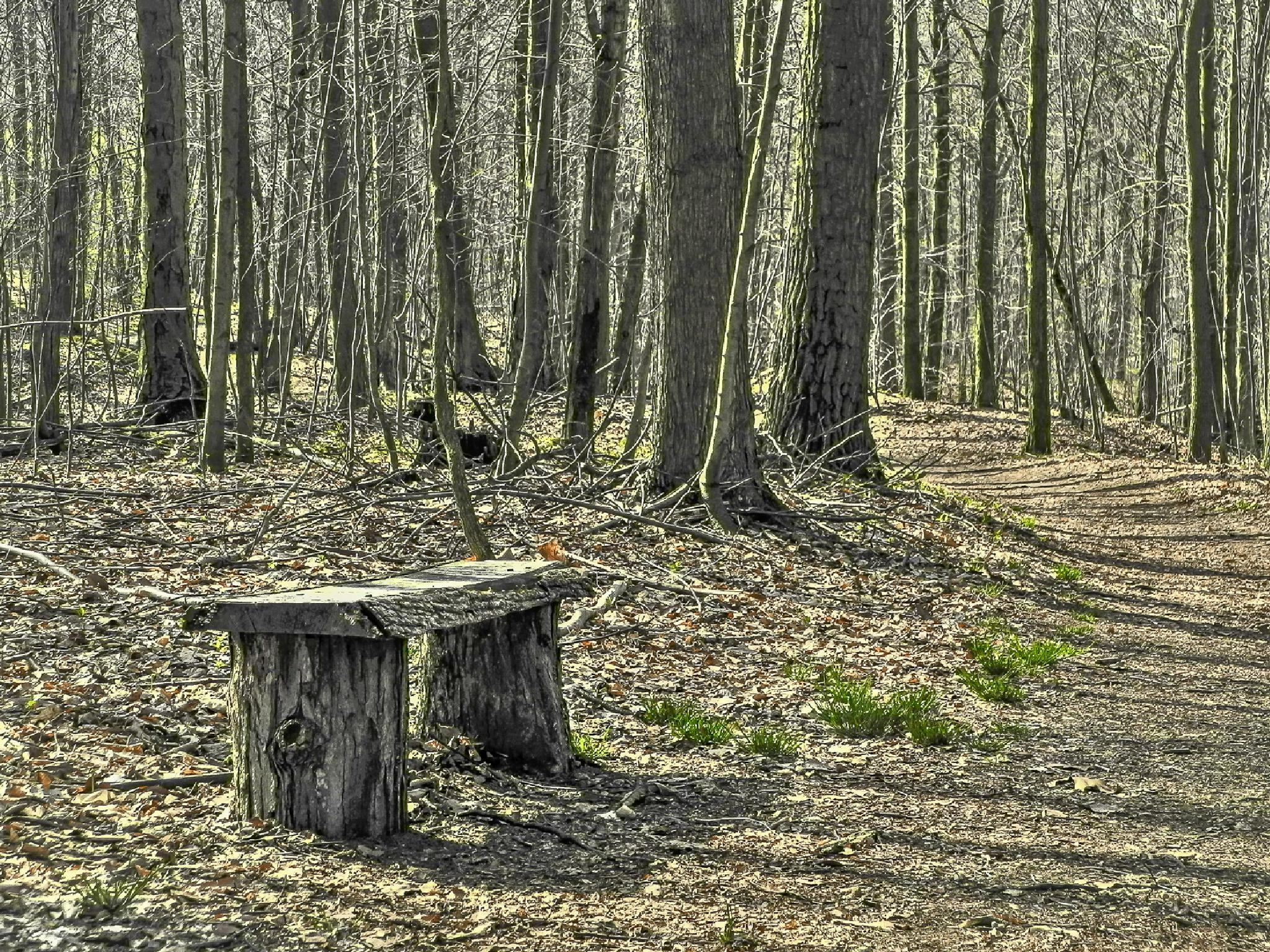 Rest Area... by Carl Göran Olsson