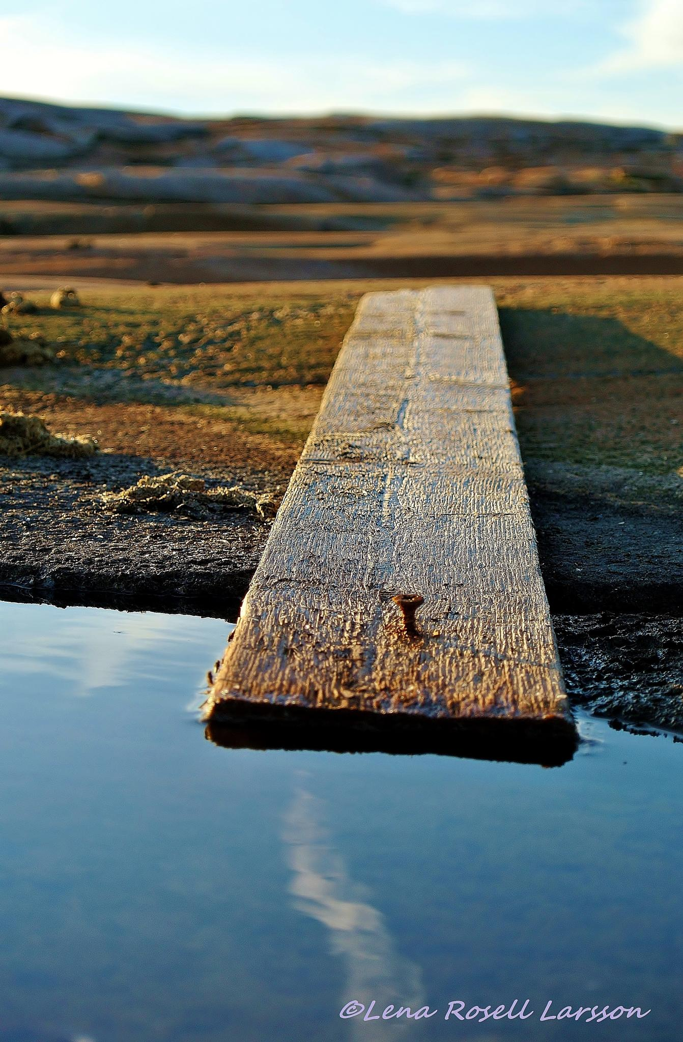 Walk the Plank by lena.roselllarsson