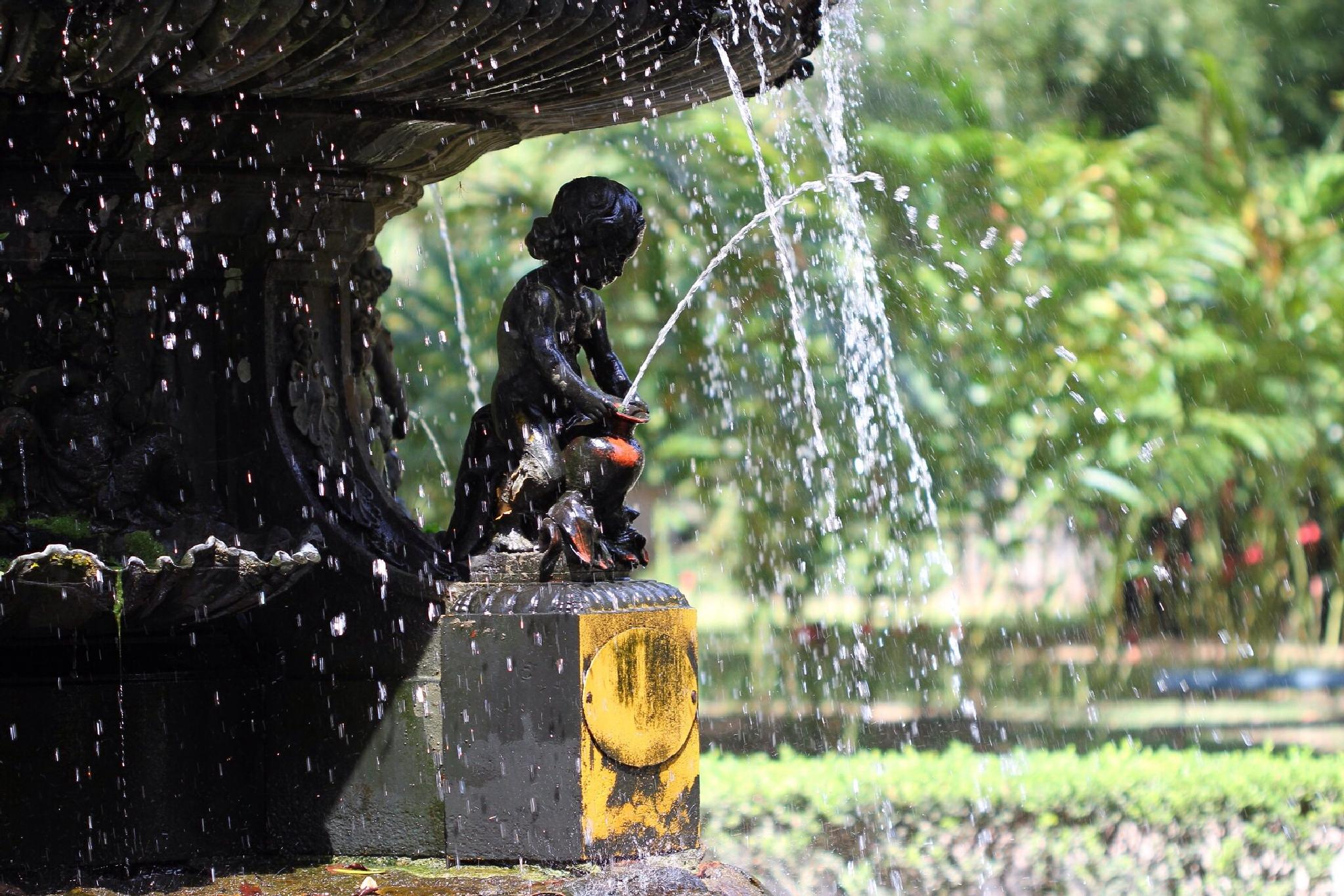 Drops... by PedroPauloRipper