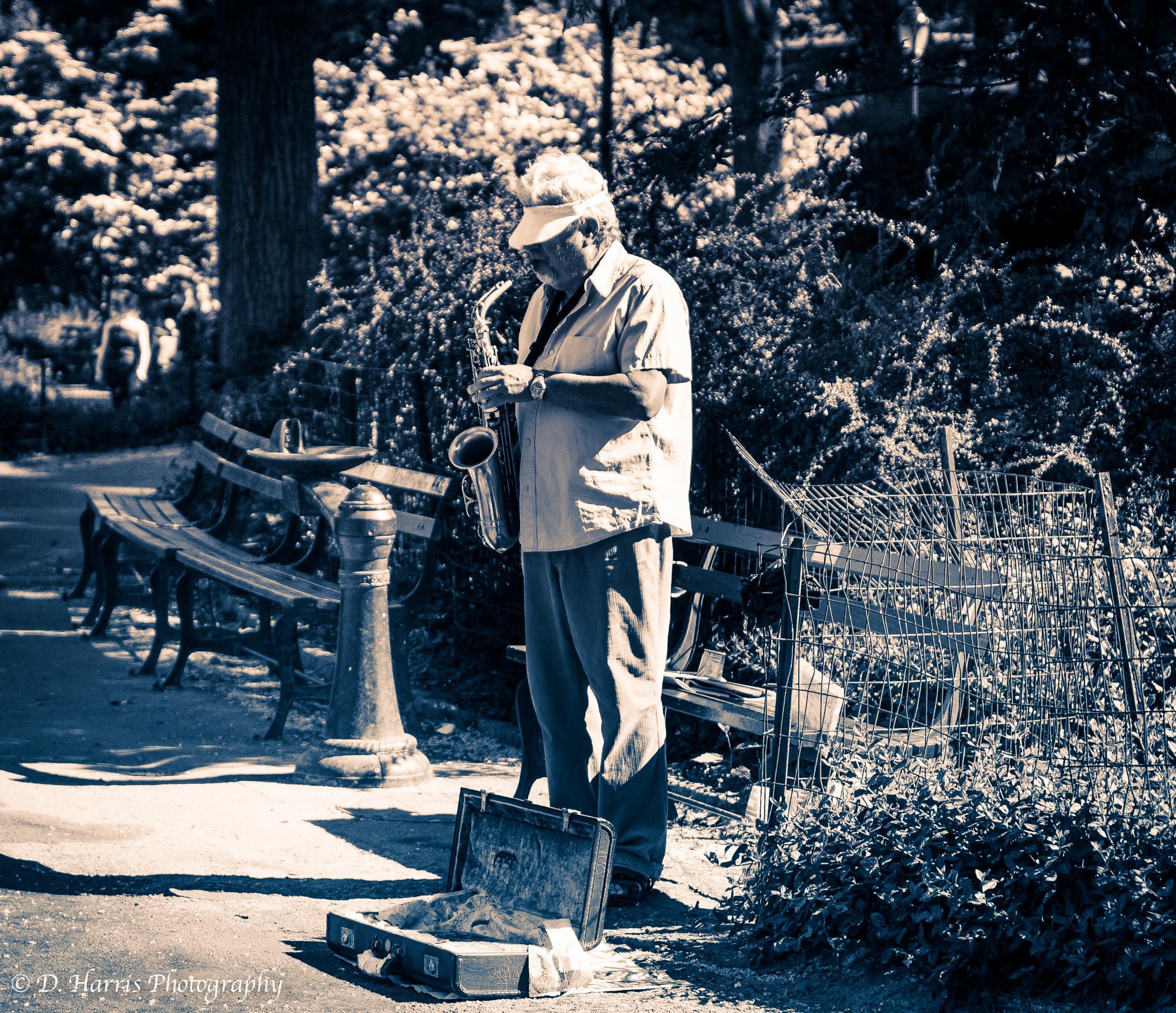 Jazz Man by Darryl Harris