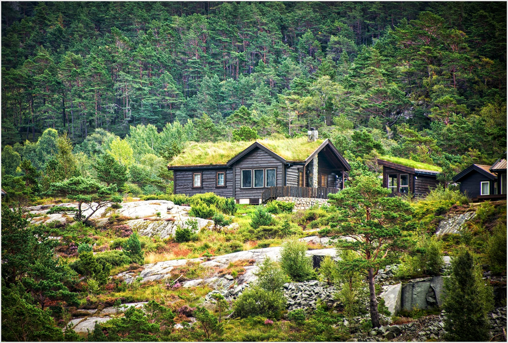 Grass Roofed House - Stavenger, Norway by tedurquhart1