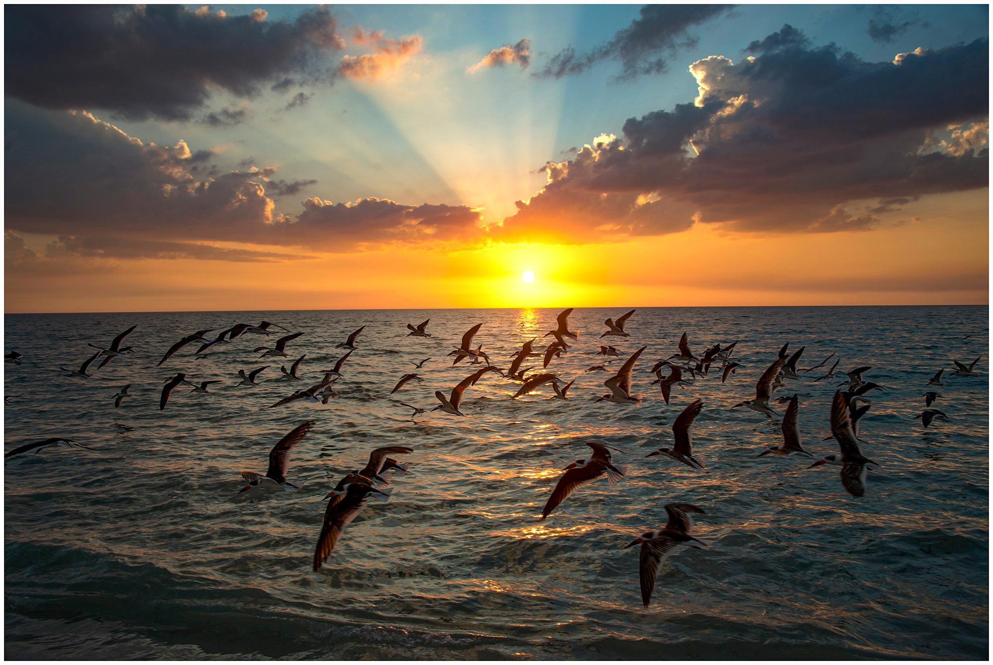 Sunset at Vanderbilt Beach by tedurquhart1